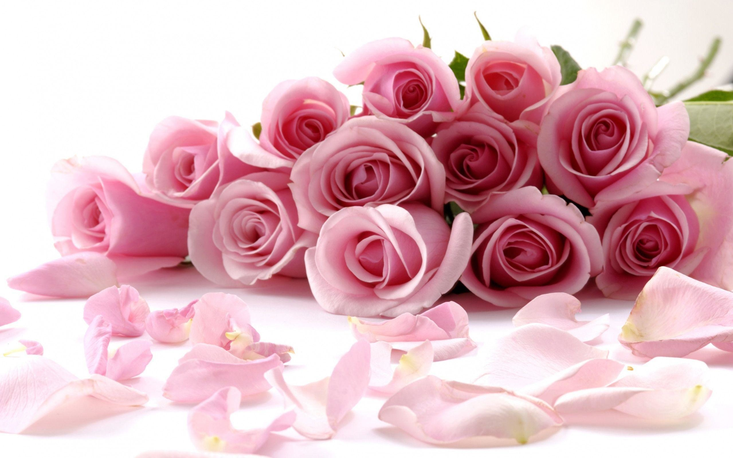 Res: 2558x1598, Images For > Wedding Flower Wallpaper