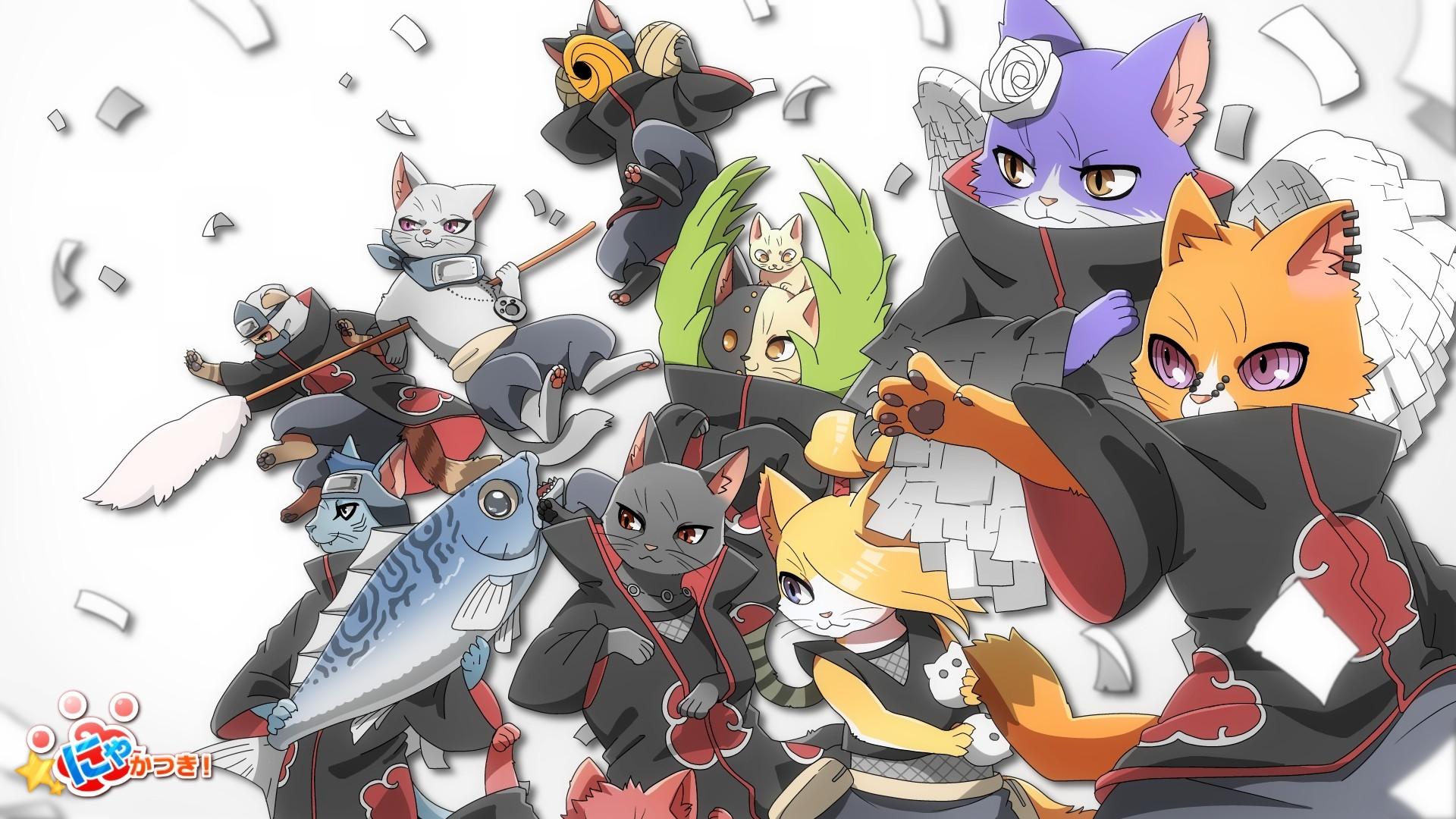 Res: 1920x1080, Anime - Naruto Itachi Uchiha Zetsu (Naruto) Hidan (Naruto) Kisame Hoshigaki  Konan