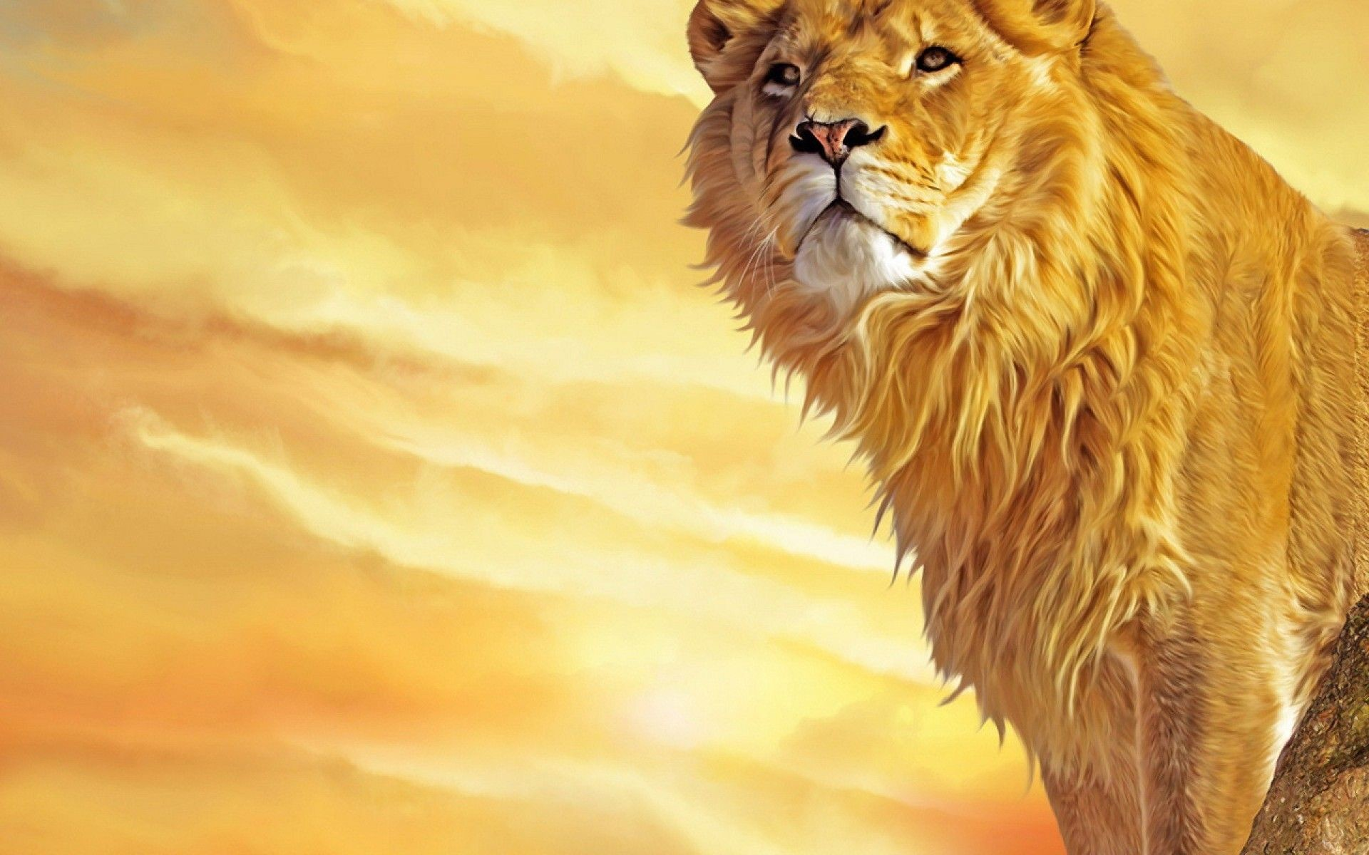 Res: 1920x1200, roaring-lion-photo