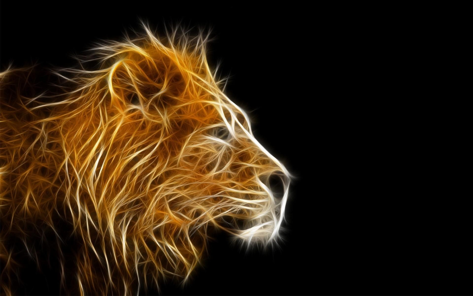 Res: 1920x1200, Black And White Lion Wallpaper Wallpapers) – Art Wallpapers
