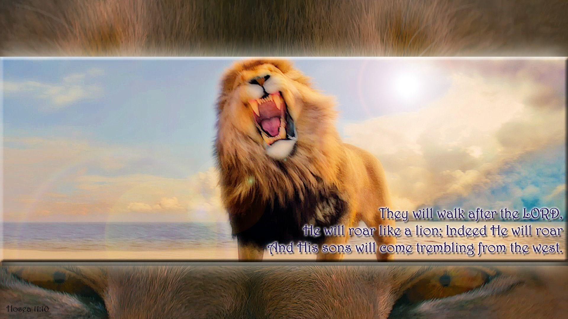 "Res: 1920x1080, NarniaWeb Community Forums • View topic - ""He will roar like ..."