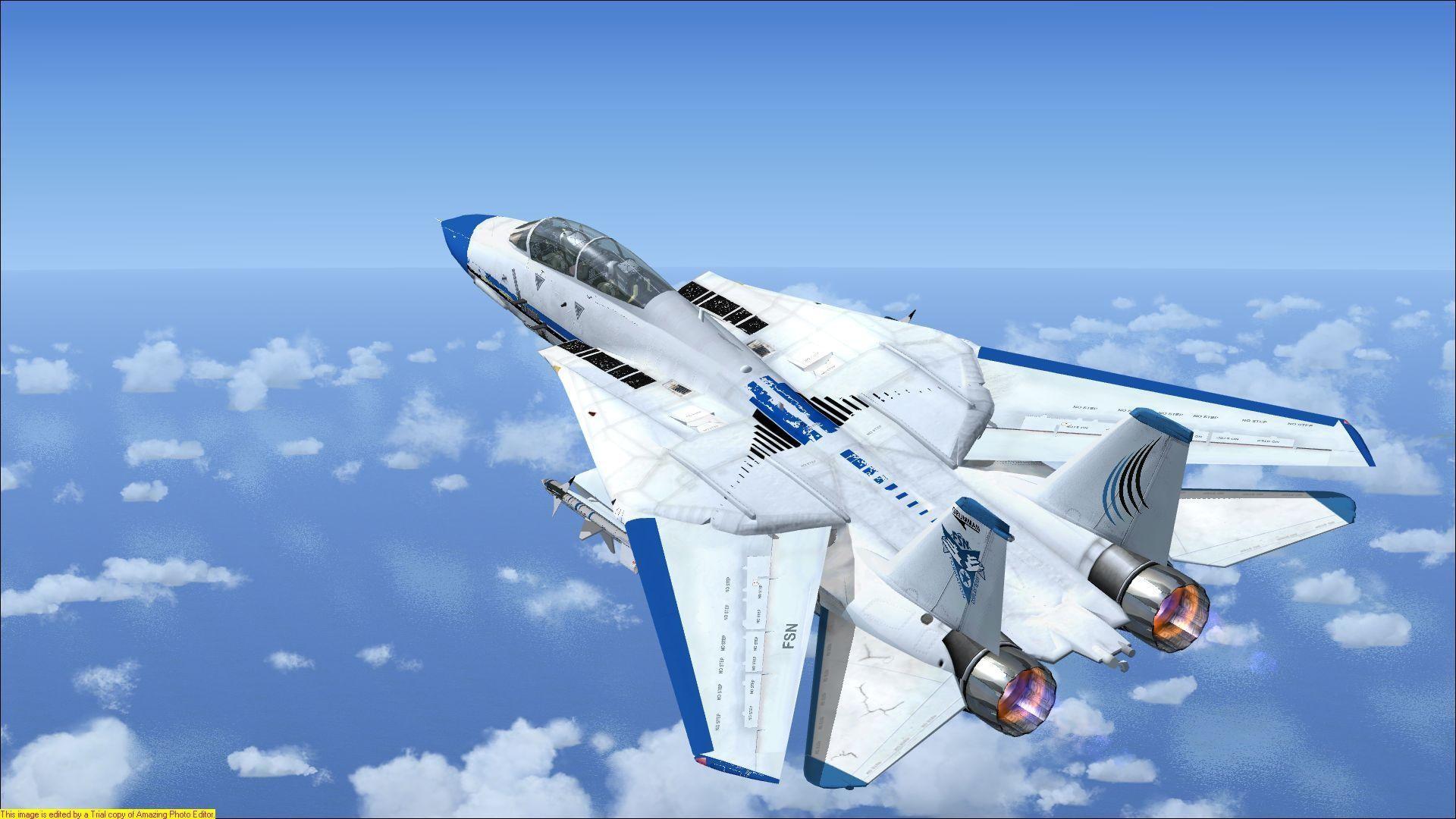 Res: 1920x1080, F-14 Tomcat fsx