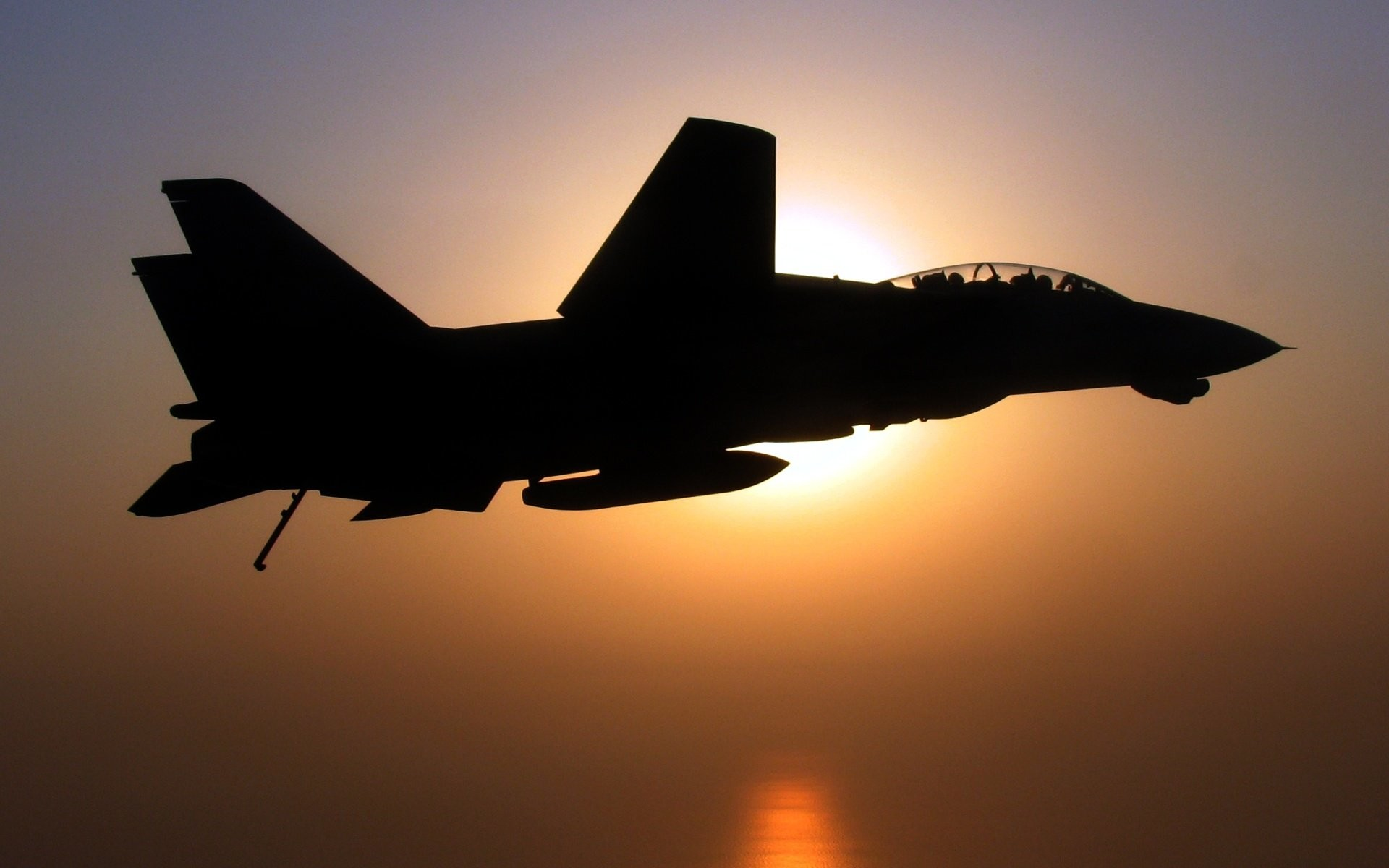 Res: 1920x1200, Aircraft military silhouettes navy F-14 Tomcat wallpaper |  |  328050 | WallpaperUP
