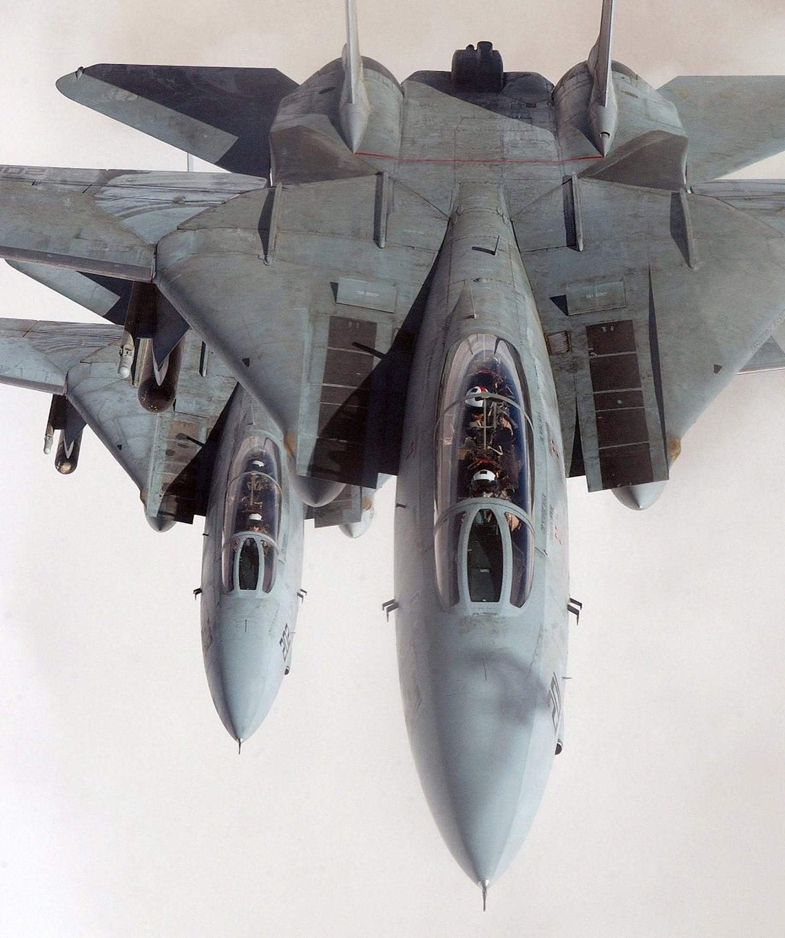 Res: 1610x1923, portrait display grumman f 14 tomcat jet fighter multirole fighter airplane  wallpaper and background