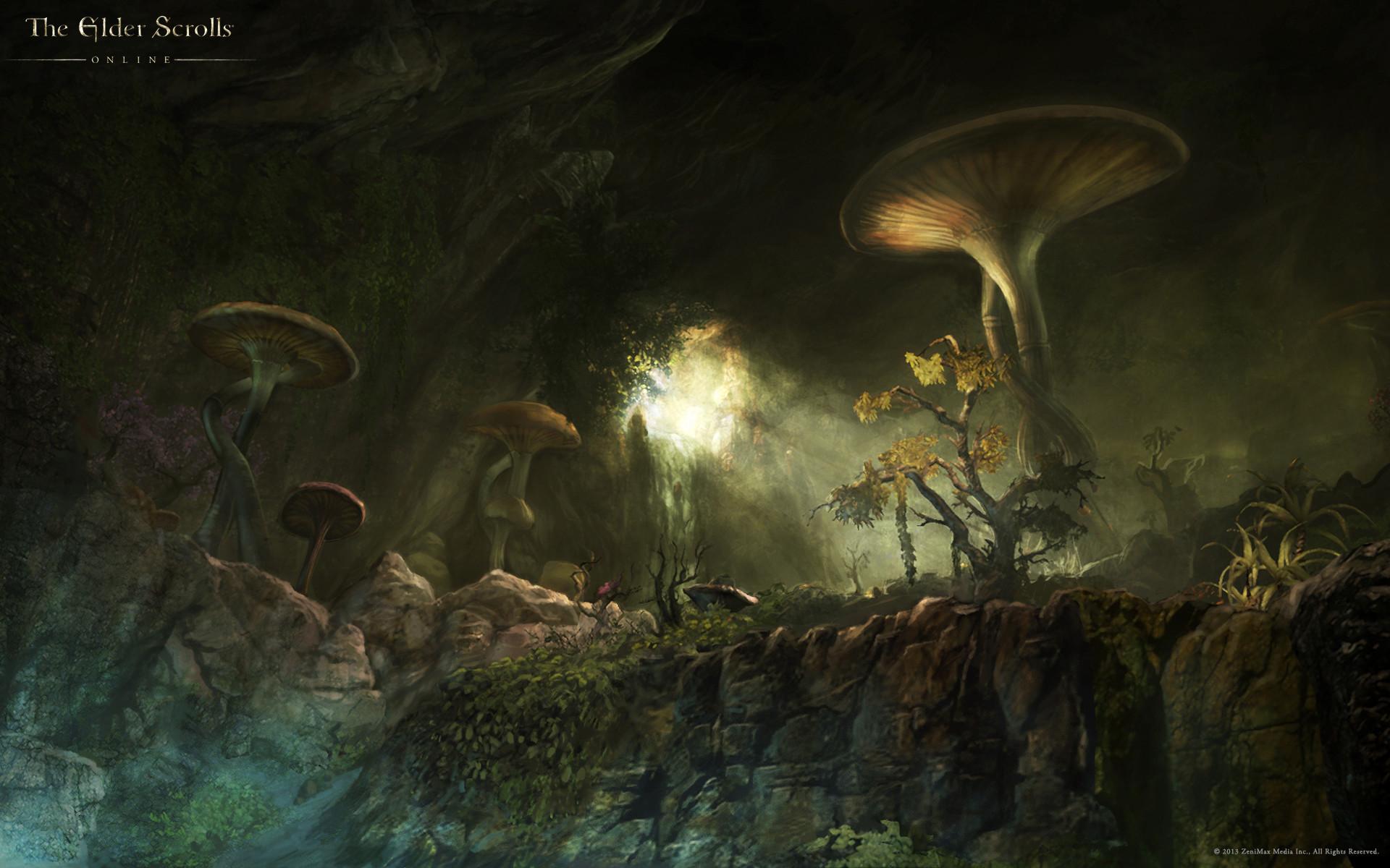 Res: 1920x1200, The_Elder_Scrolls_Online_Wallpaper_Art_05 ·  The_Elder_Scrolls_Online_Wallpaper_Art_06 ·  The_Elder_Scrolls_Online_Wallpaper_Art_06a