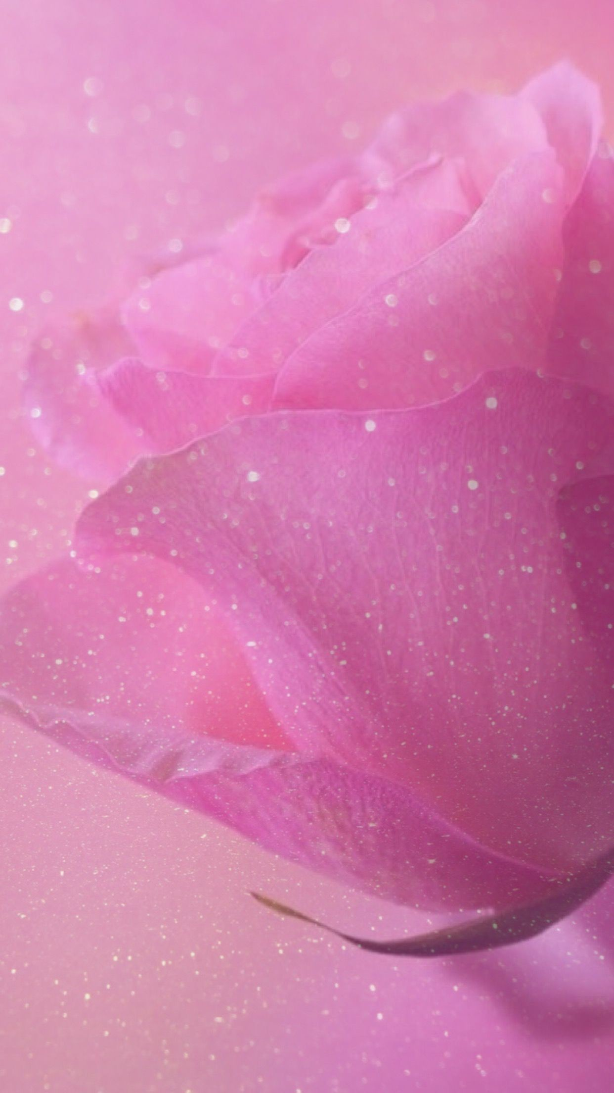 Res: 1242x2208, rose, sparkle, glitter, wallpaper, background, pink, pretty, girly,