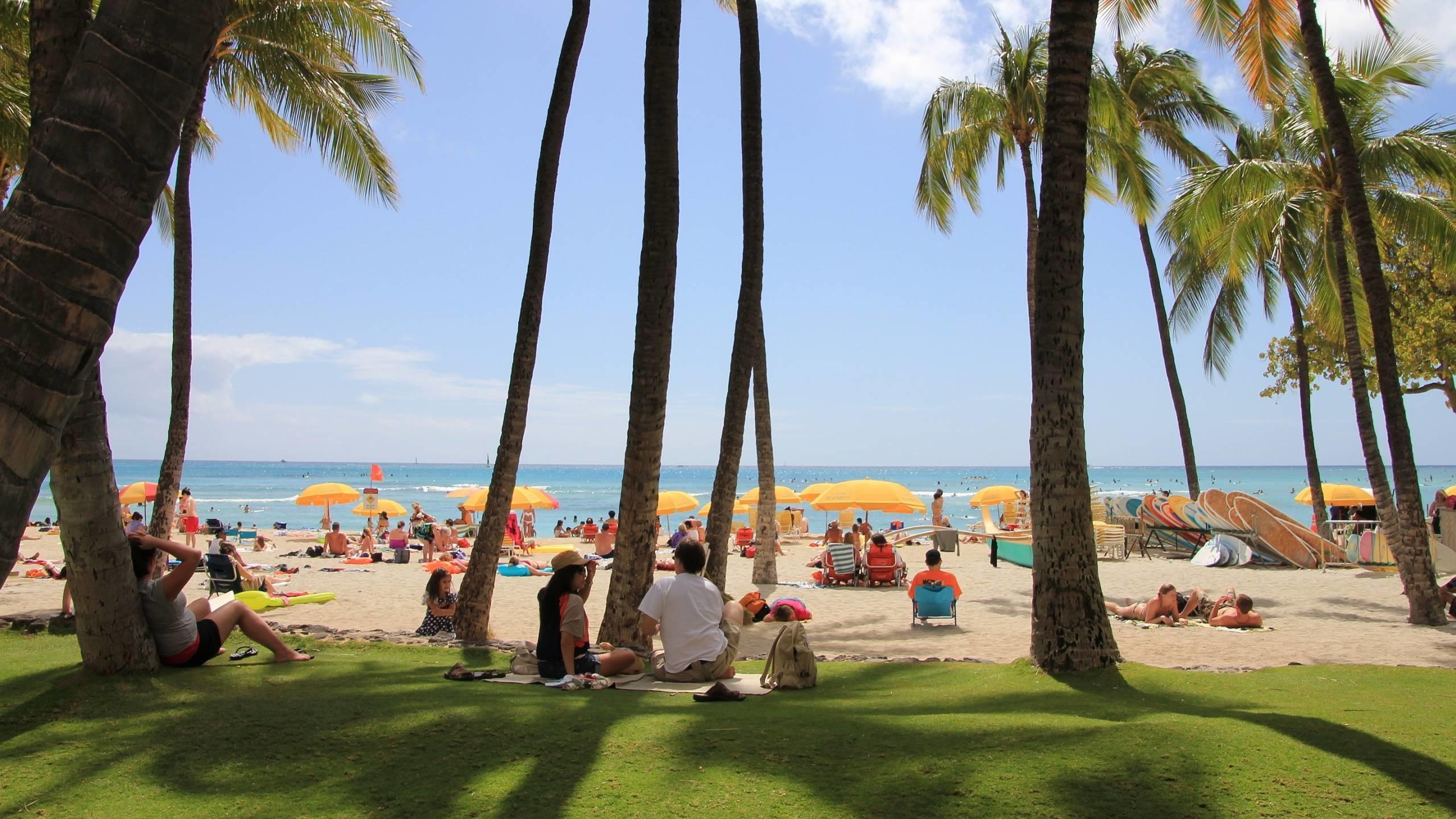 Res: 2560x1440, Waikiki Beach Hawaii wallpaper - 1281353