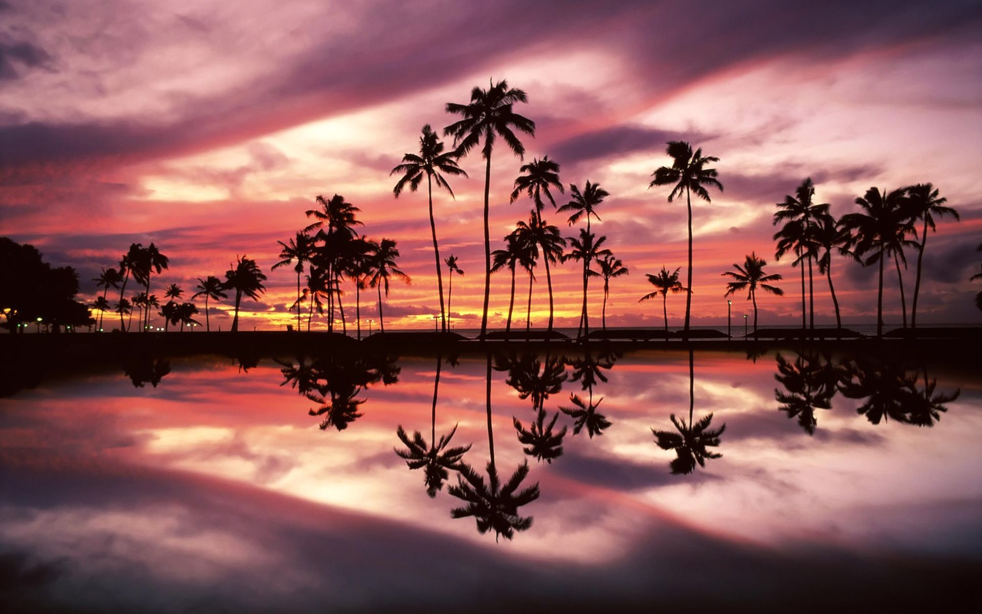 Res: 1920x1200, units of Palm Trees Wallpaper 1600×1200 Palm Trees Beach Wallpapers (32  Wallpapers)