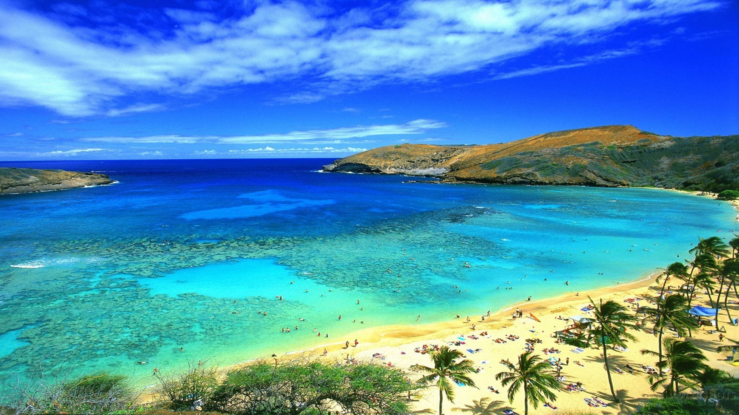 Res: 2560x1440, Beautiful Waikiki Beach Images