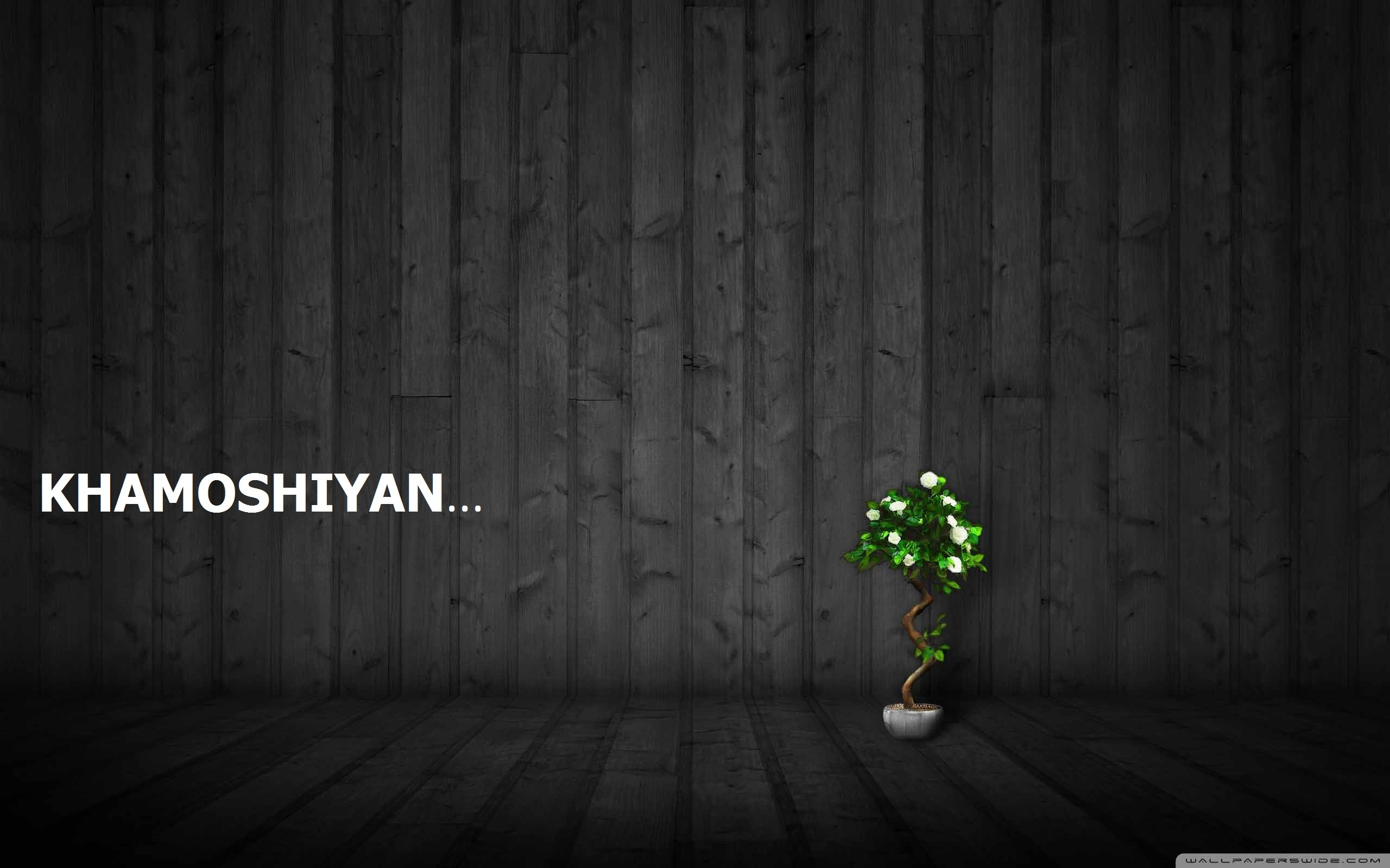 Res: 2560x1600, bonsai wallpaper