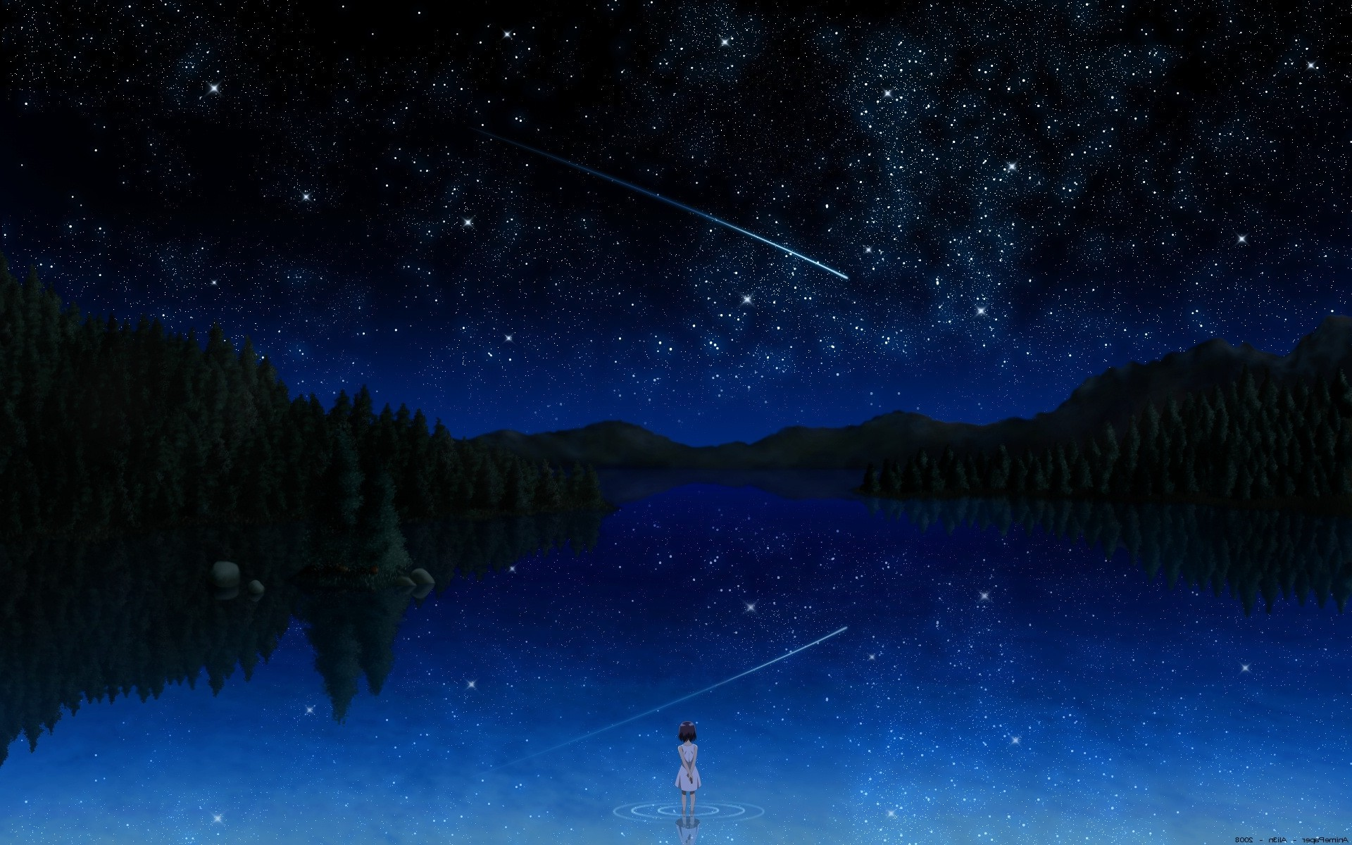 Res: 1920x1200, nature, Sky, Trees, Shooting Stars Wallpapers HD / Desktop and Mobile  Backgrounds