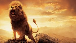 Narnia Aslan wallpapers