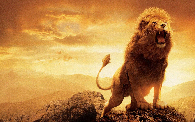 Res: 2880x1800, Narnia Aslan Wallpapers Wallpaper