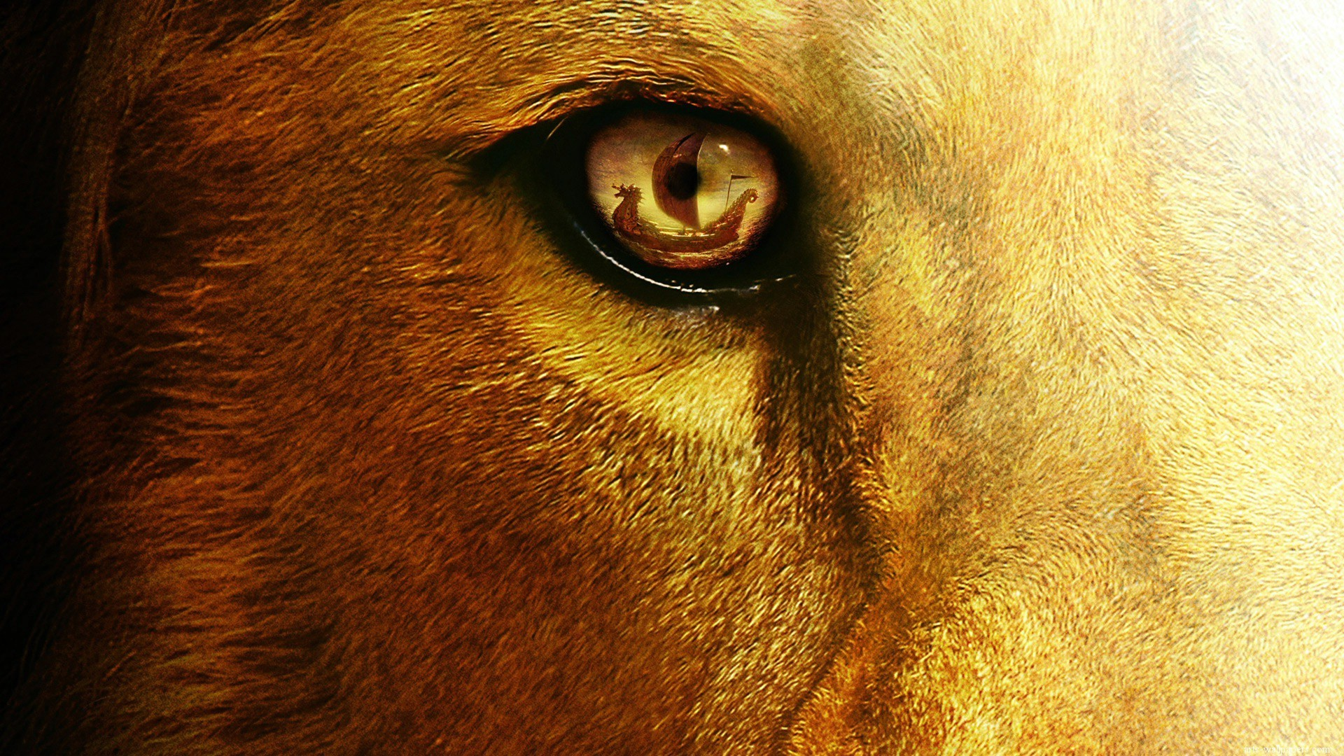 Res: 1920x1080, Aslan Narnia Desktop Wallpaper. Click on the image to view full size and  download.