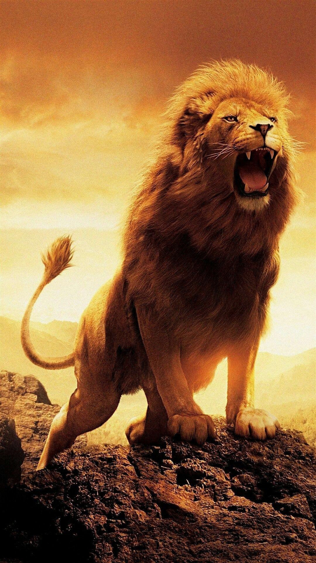 Res: 1080x1920, African Animals, Lion Tattoo, Black Lion, Animal Pictures, Wallpaper Free  Download, Animal Tattoos, Beautiful Cats, Cat Art, Iphone Wallpapers