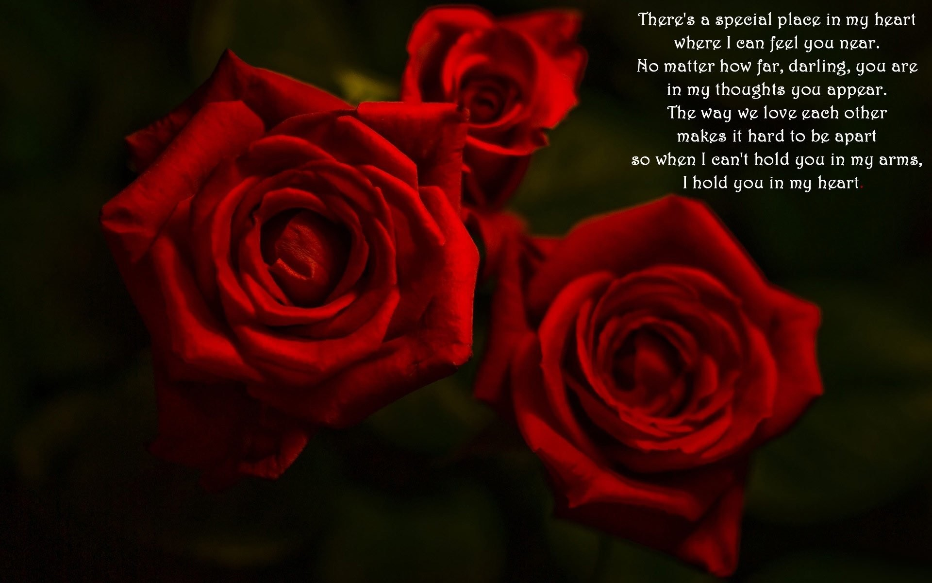 Res: 1920x1200, love poem and red roses