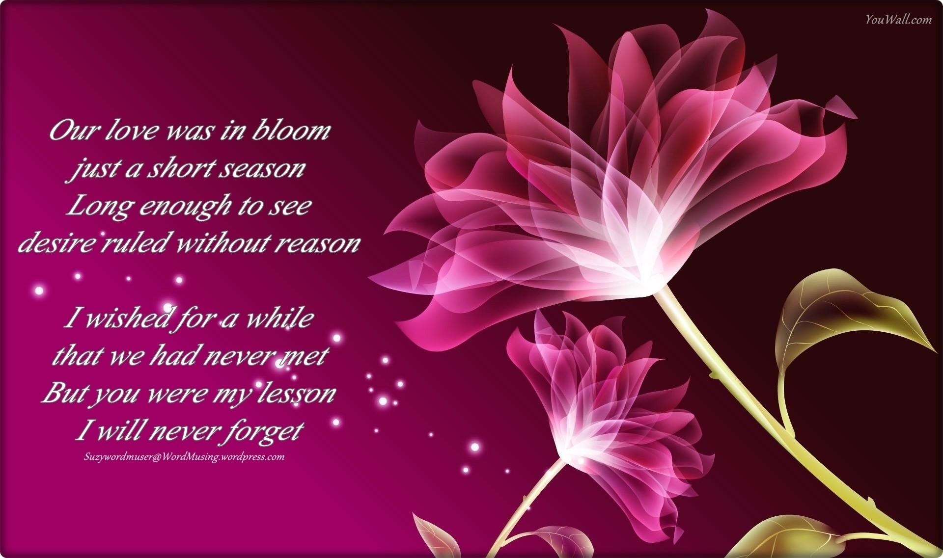 Res: 1920x1137, Purple Flowers Poem 25 Hd Wallpaper Hdflowerwallpaper