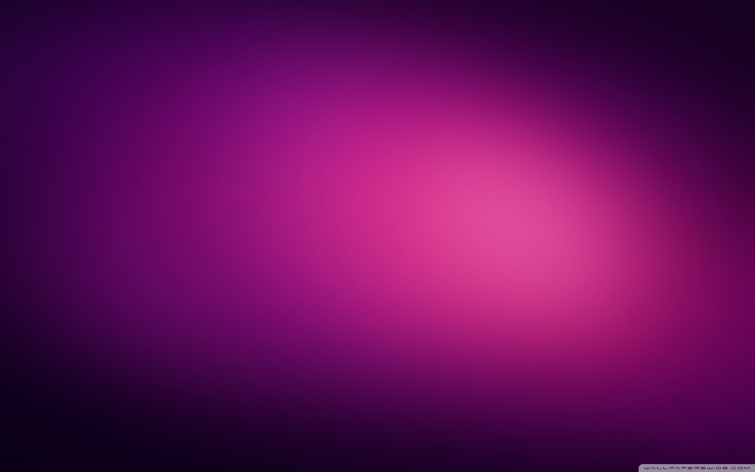 Res: 2560x1600, Violet Wallpapers 3 - 2560 X 1600