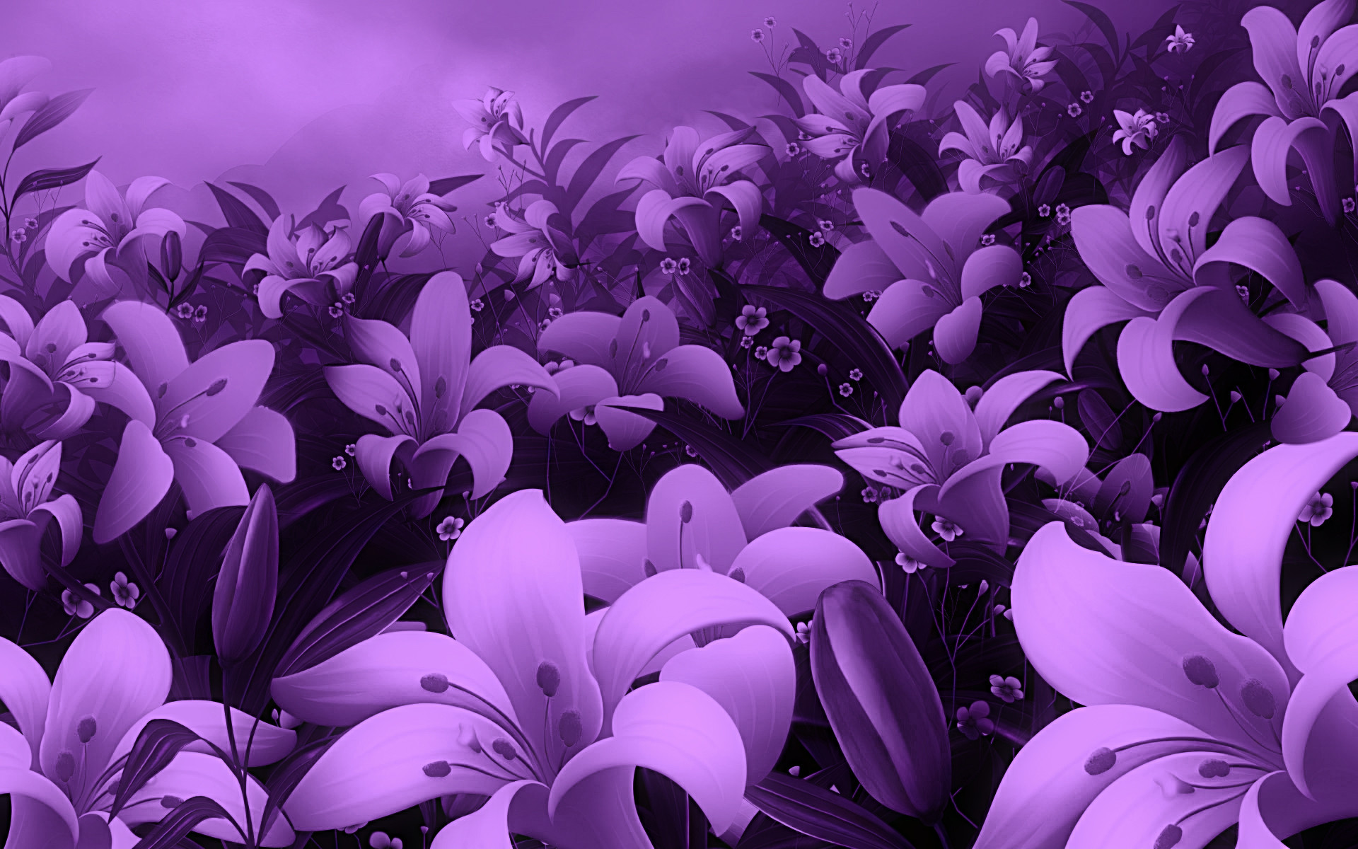 Res: 1920x1200, Violet Rose Wallpapers - Wallpaper Cave