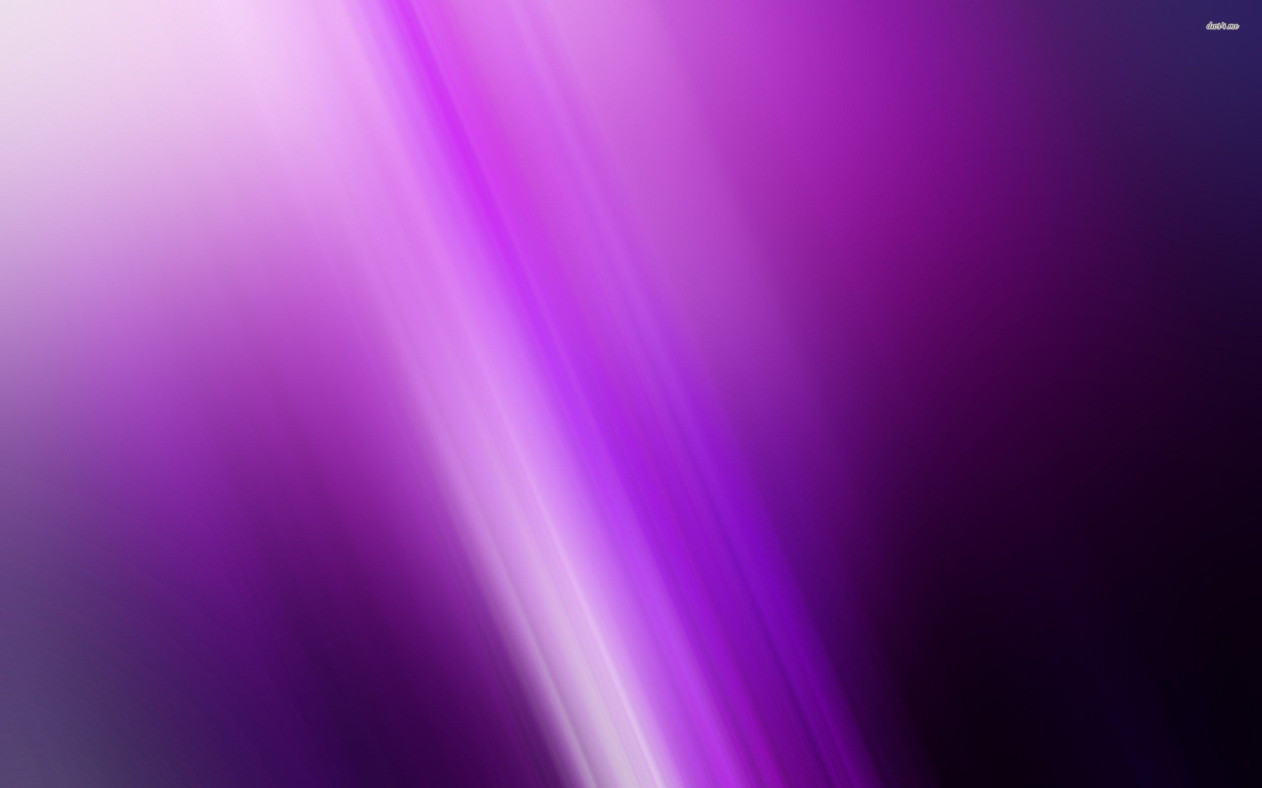 Res: 2560x1600, Glowing violet lines wallpaper - Abstract wallpapers - #27573