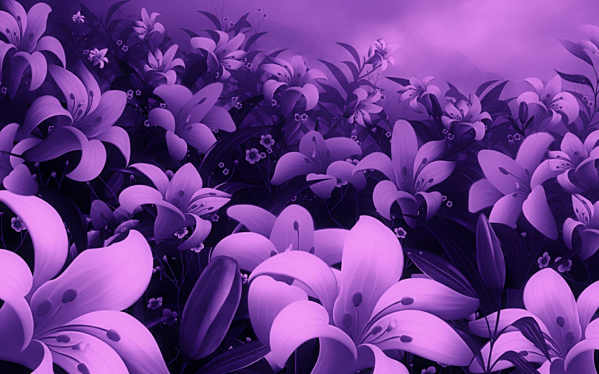 Res: 1920x1200, Awesome, Violet, Flower, Wallpaper, Full, Screen, High, Definition,  Desktop, Background, Photos, Free, Amazing, Cool, Download Wallpaper,  1920×1200 ...