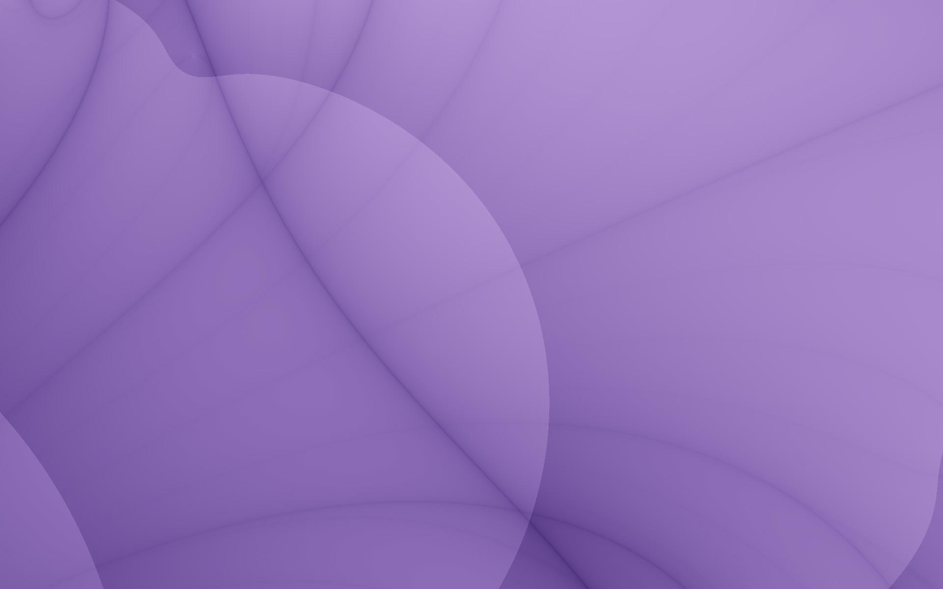 Res: 1920x1200, Bild: Violet Blütenblatt wallpapers and stock photos. «
