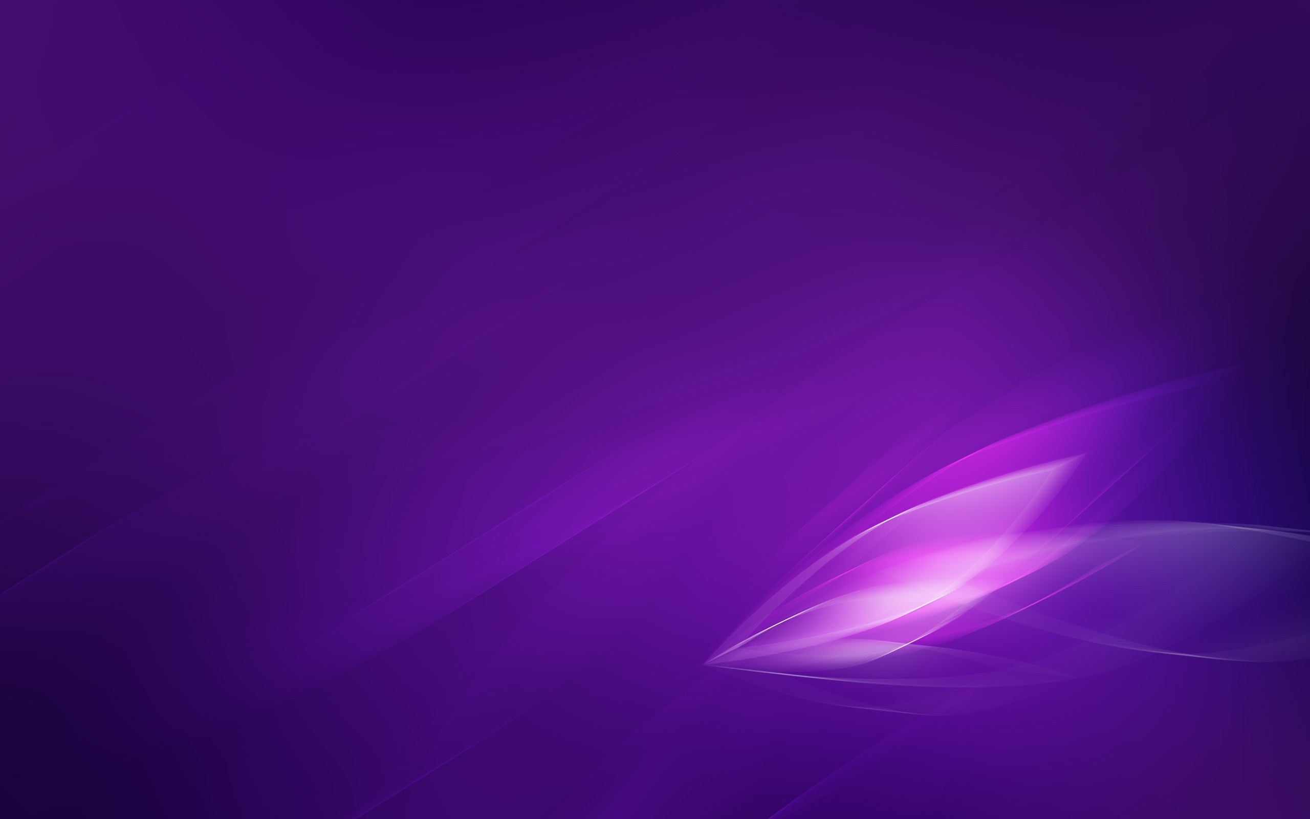 Res: 2560x1600, Exciting Violet Wallpaper