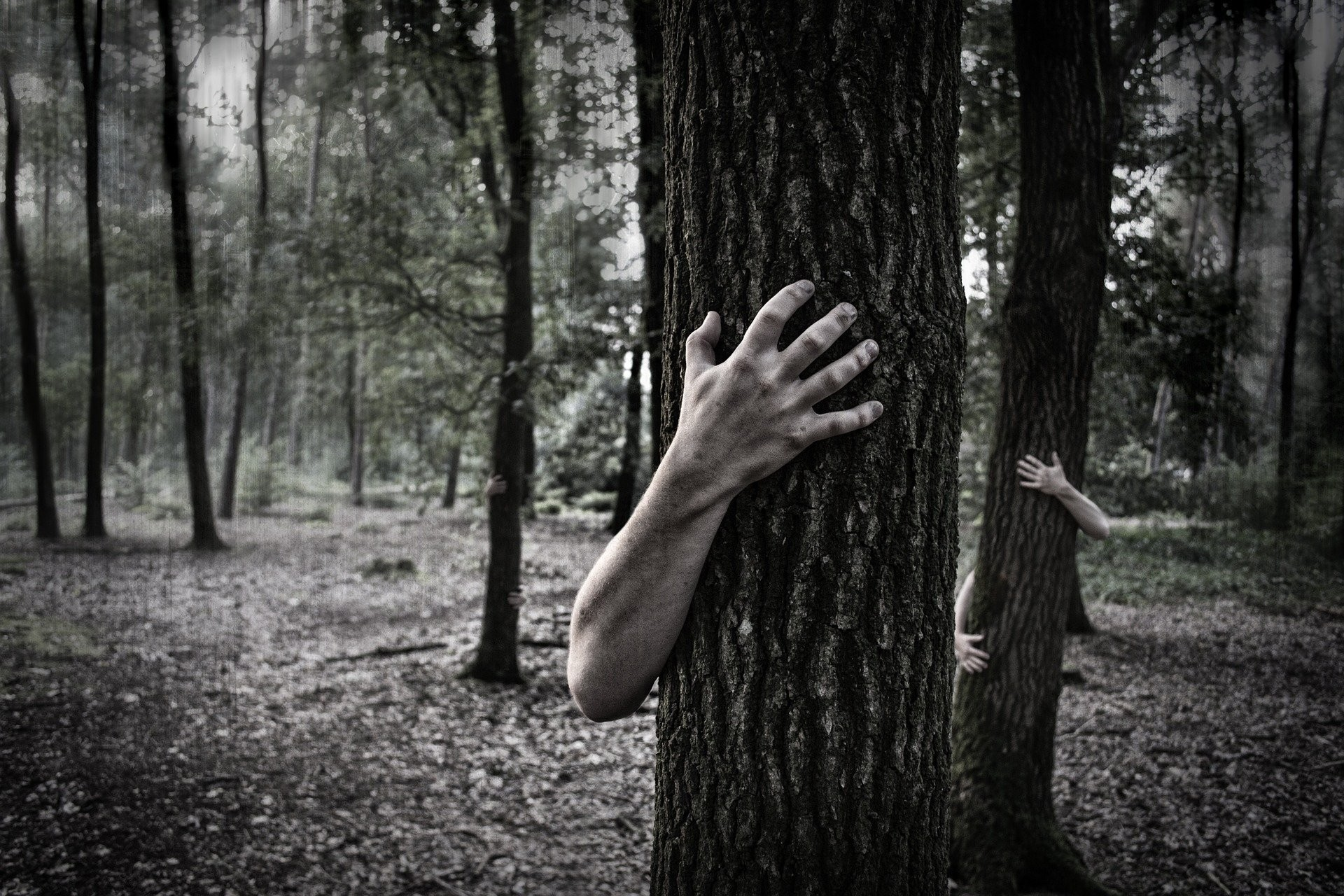 Res: 1920x1280, Hands Trunk Creepy Zombie Forest Horror Scary forest wallpaper |   | 1061786 | WallpaperUP