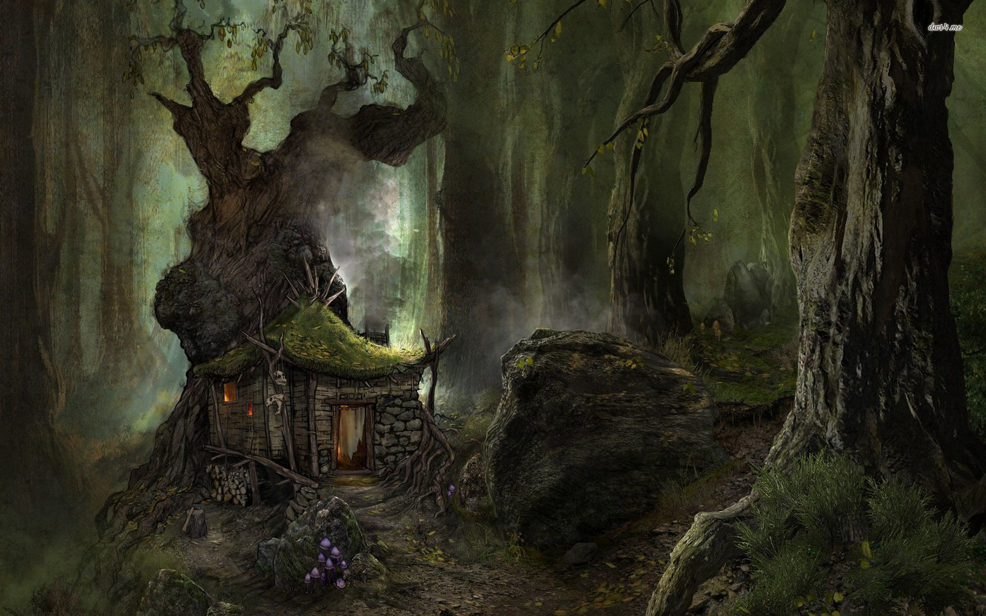 Res: 1920x1200, Small house in the scary forest Fantasy HD desktop wallpaper, Tree wallpaper,  House wallpaper, Forest wallpaper - Fantasy no.