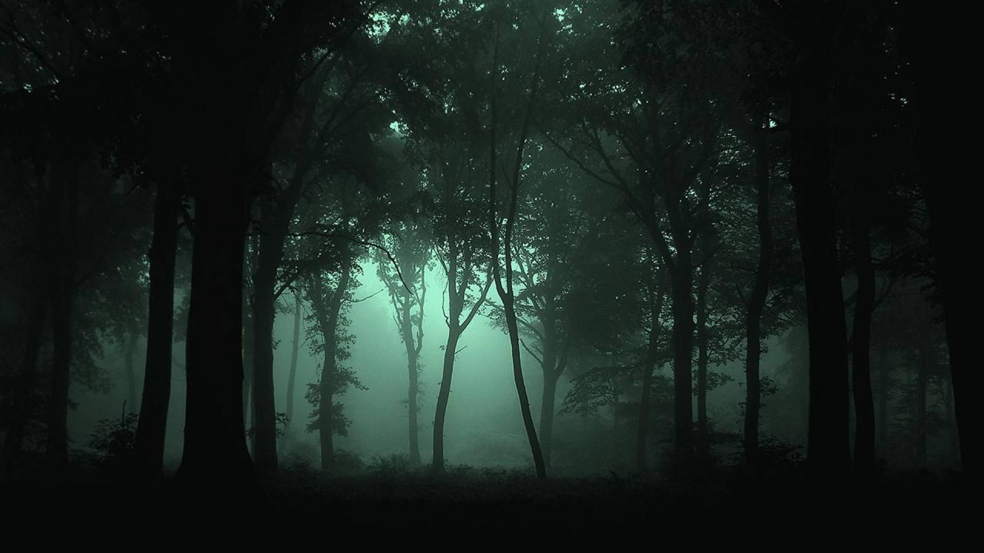Res: 1920x1080, Dark Forest Wallpaper Mobile