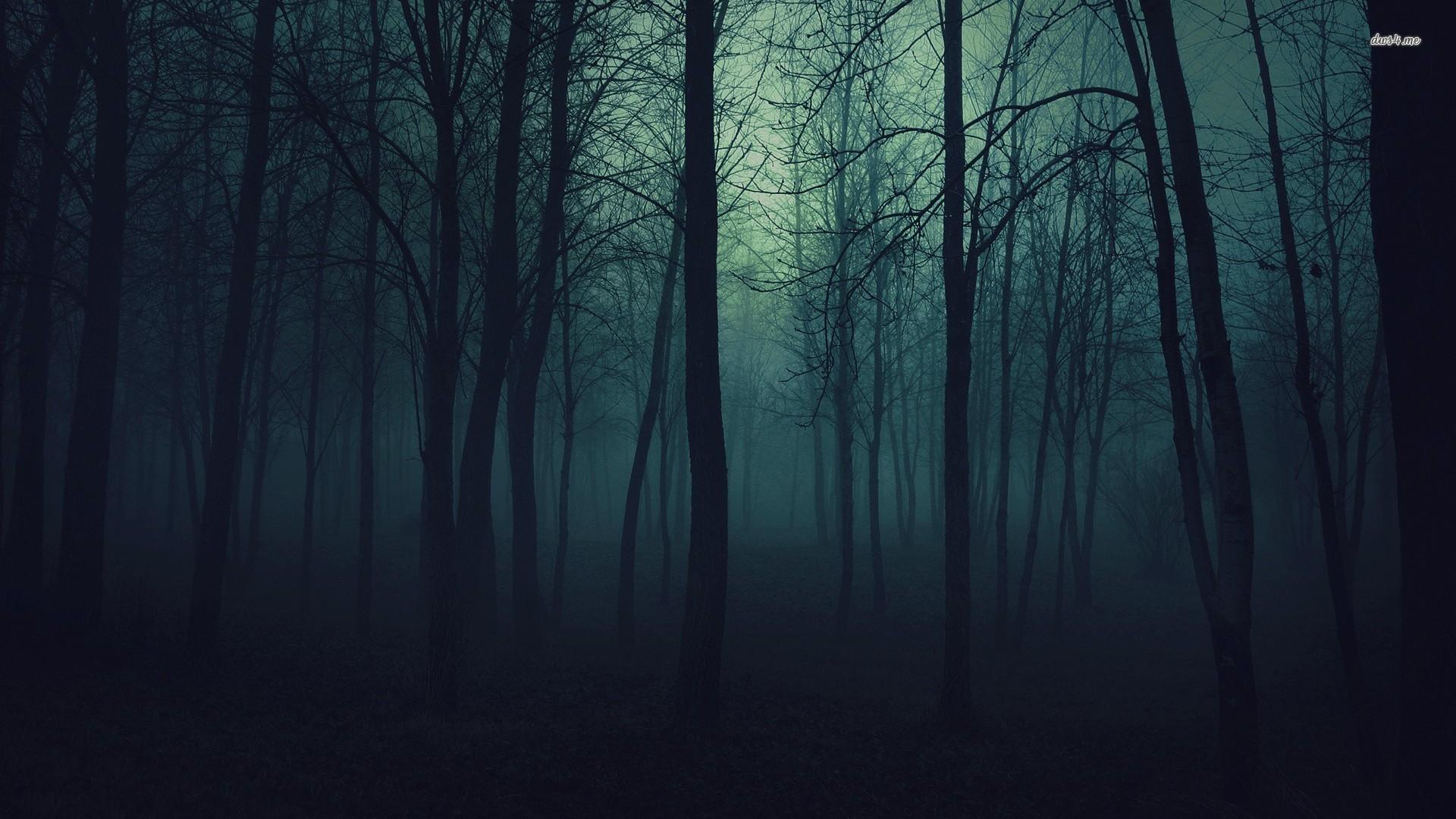 Res: 1920x1080, Dark Forest Wallpaper