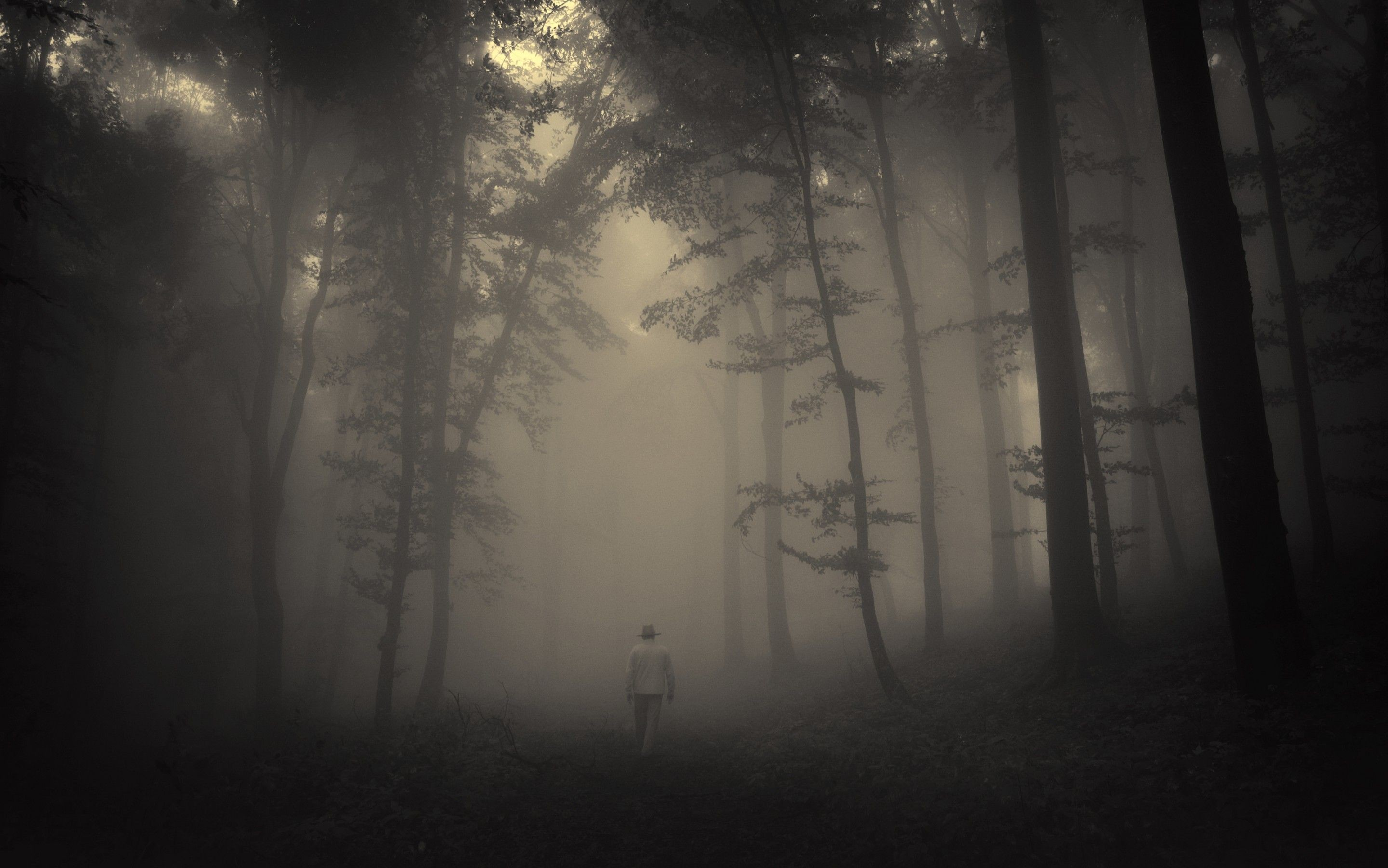 Res: 2880x1800, Creepy Landscape Wallpapers Photo