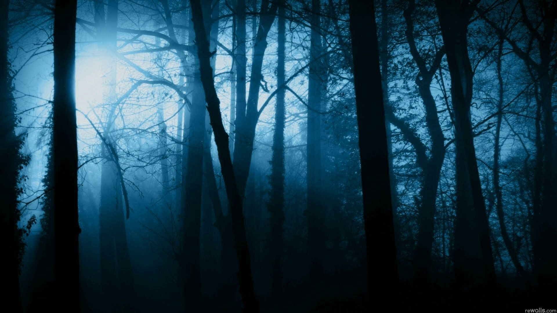 Res: 1920x1080, Scary Forest | Horror | Pinterest | Scary and Wallpaper free download