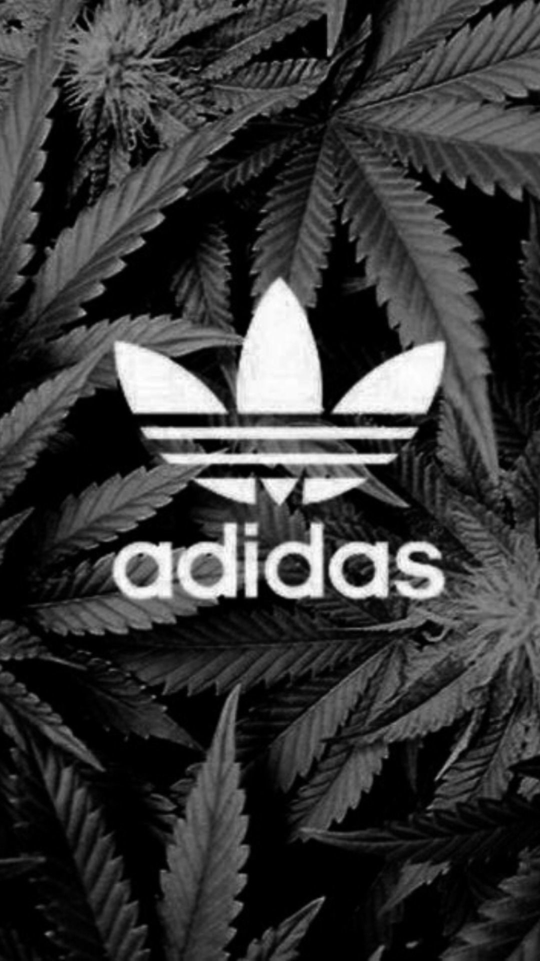 Res: 1080x1920, iPhone Wallpapers — iPhone 6 adidas wallpaper 2