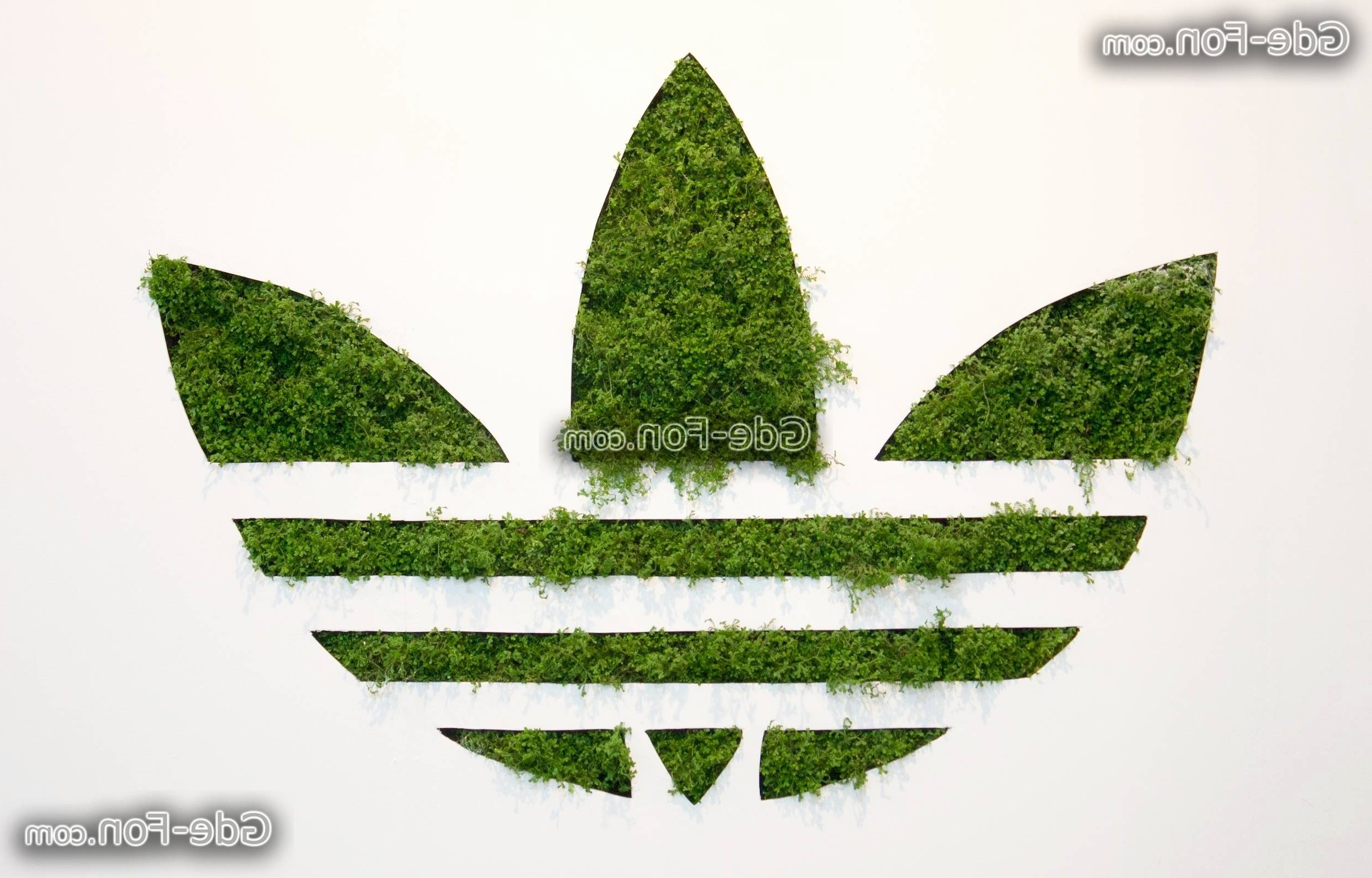 Res: 2500x1600, Adidas Zeichen Awesome Adidas originals Logo Wallpapers Wallpaper Cave
