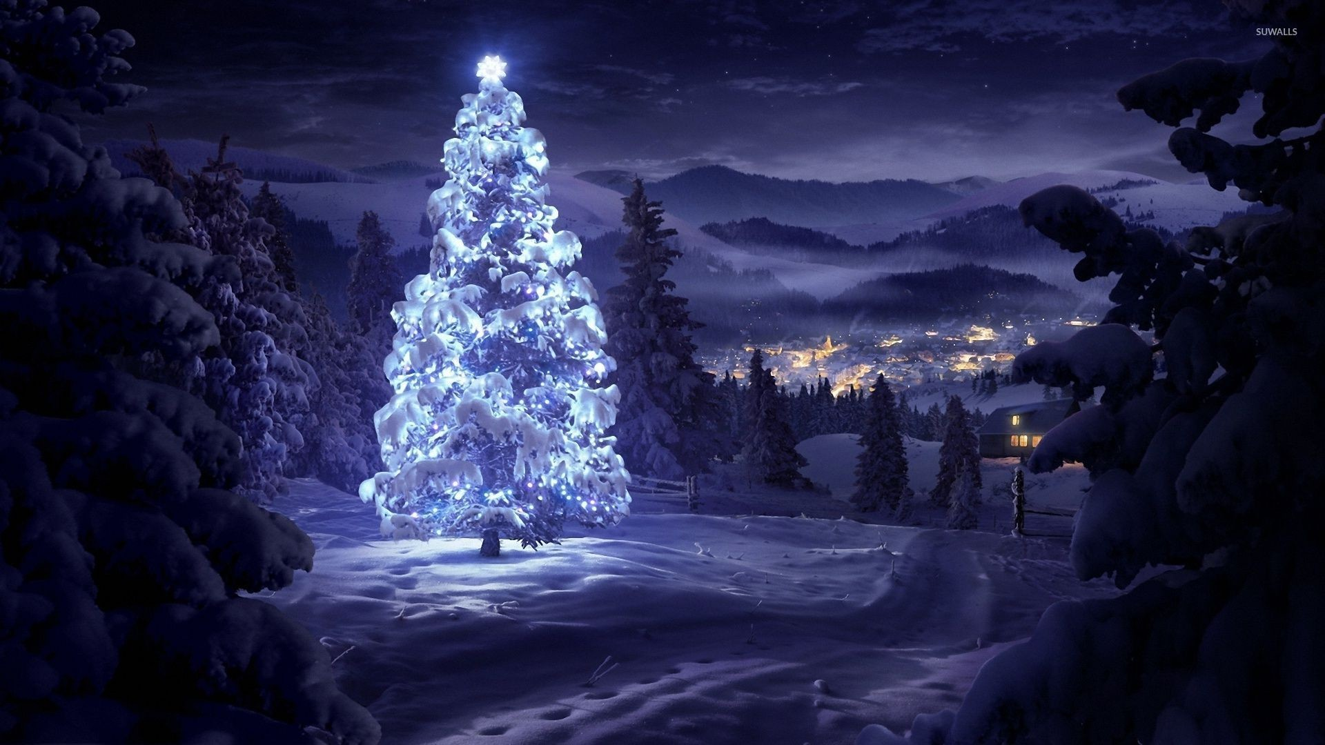 Res: 1920x1080, Bright star on top of a beautiful snowy tree in the forest wallpaper ·  Holidays · Christmas · Winter ...