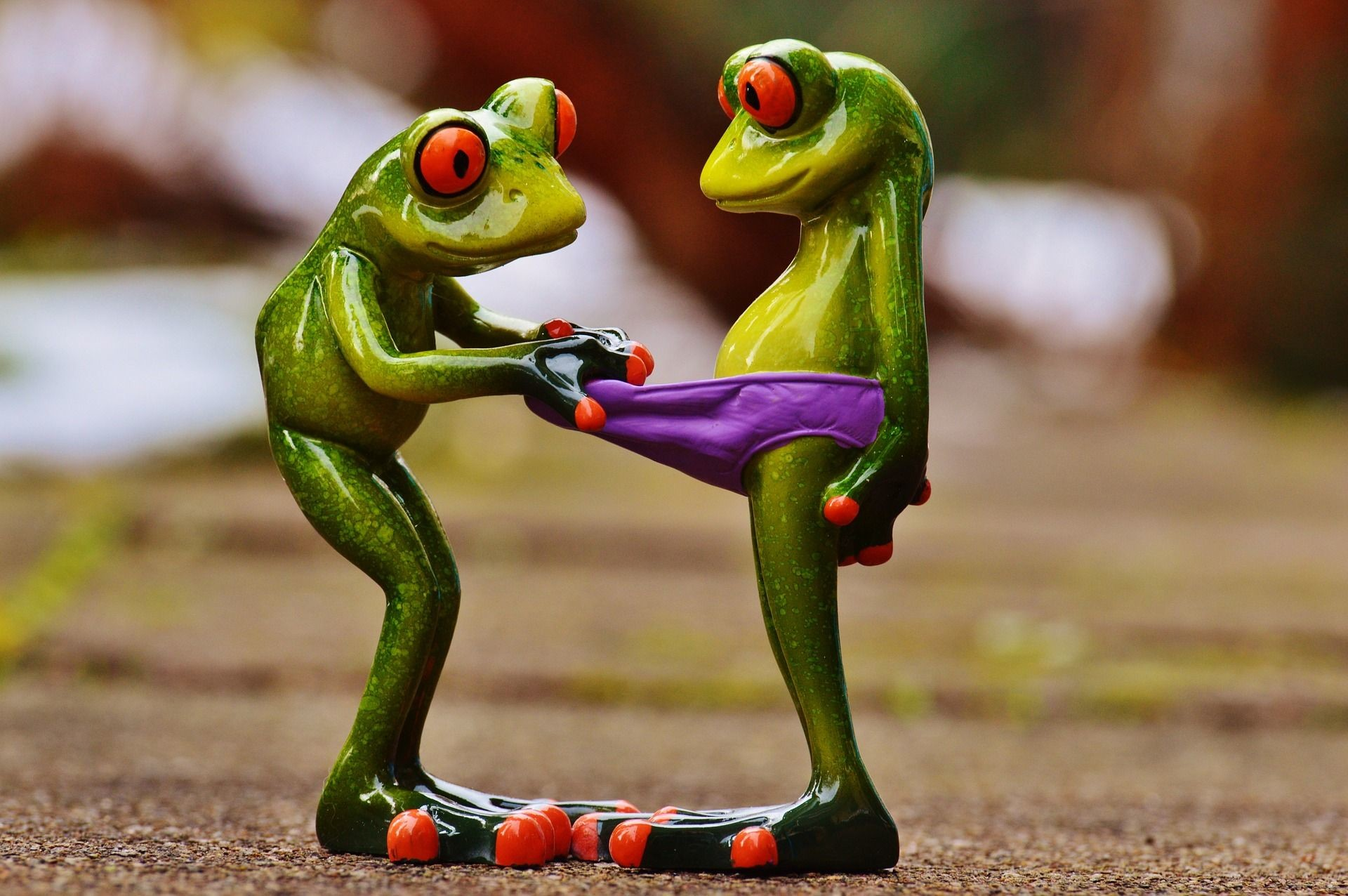 Res: 1920x1276, look at best funny frogs[1920x1080] Need #iPhone #6S #Plus #Wallpaper/  #Background for #IPhone6SPlus? Follow iPhone 6S Plus 3Wallpapers/  #Backgrounds Must ...
