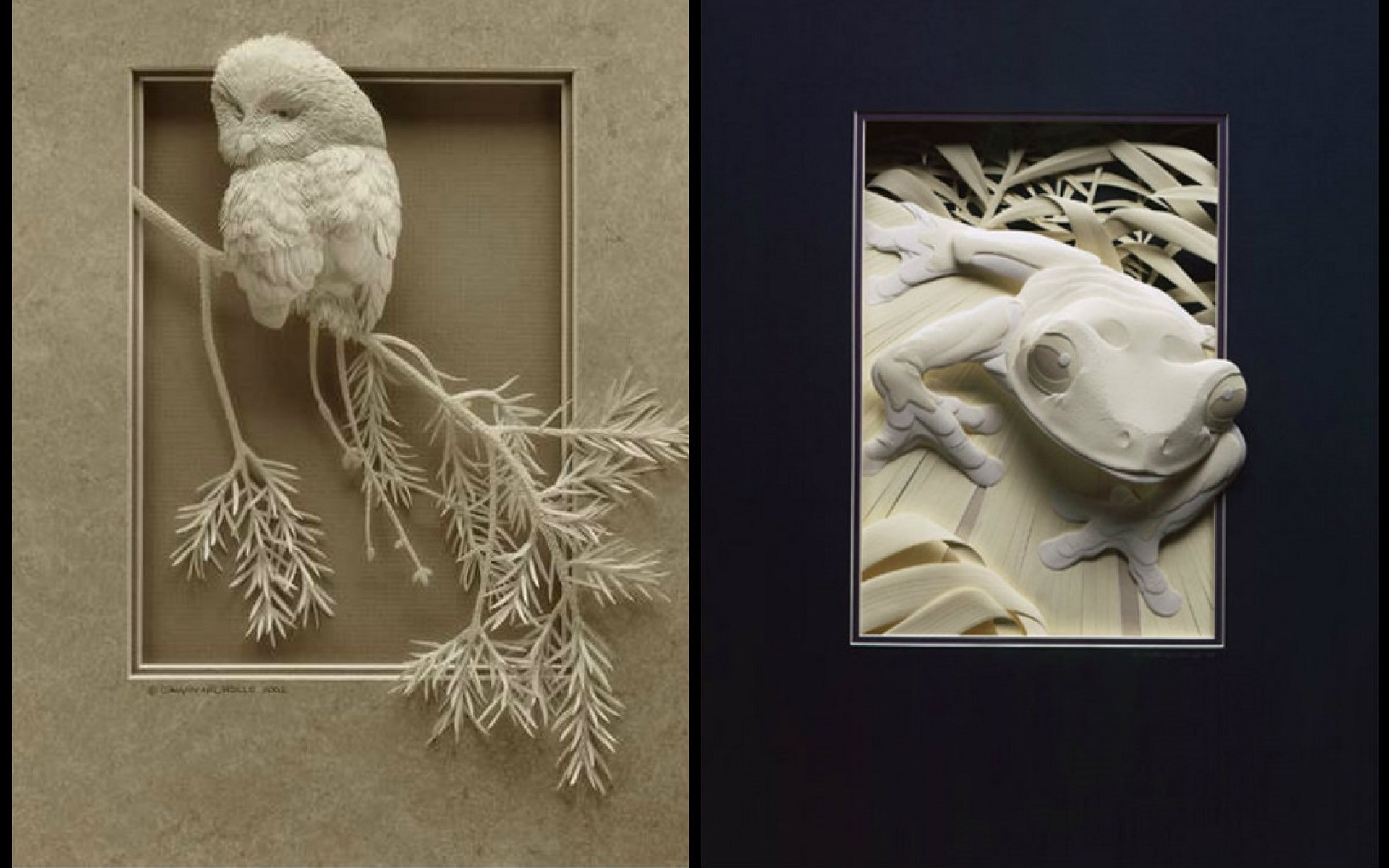 Res: 1920x1200, Image: Paper Owl & Froggy wallpapers and stock photos. Â«