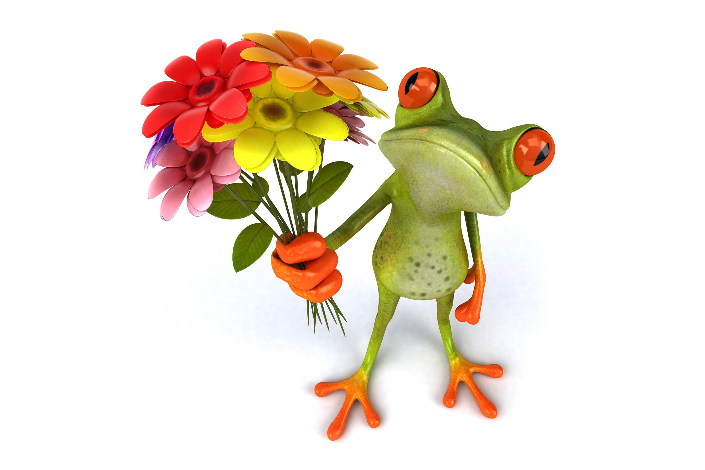 Res: 3000x2000, Wallpaper frog 3d funny flowers frog wallpapers rendering