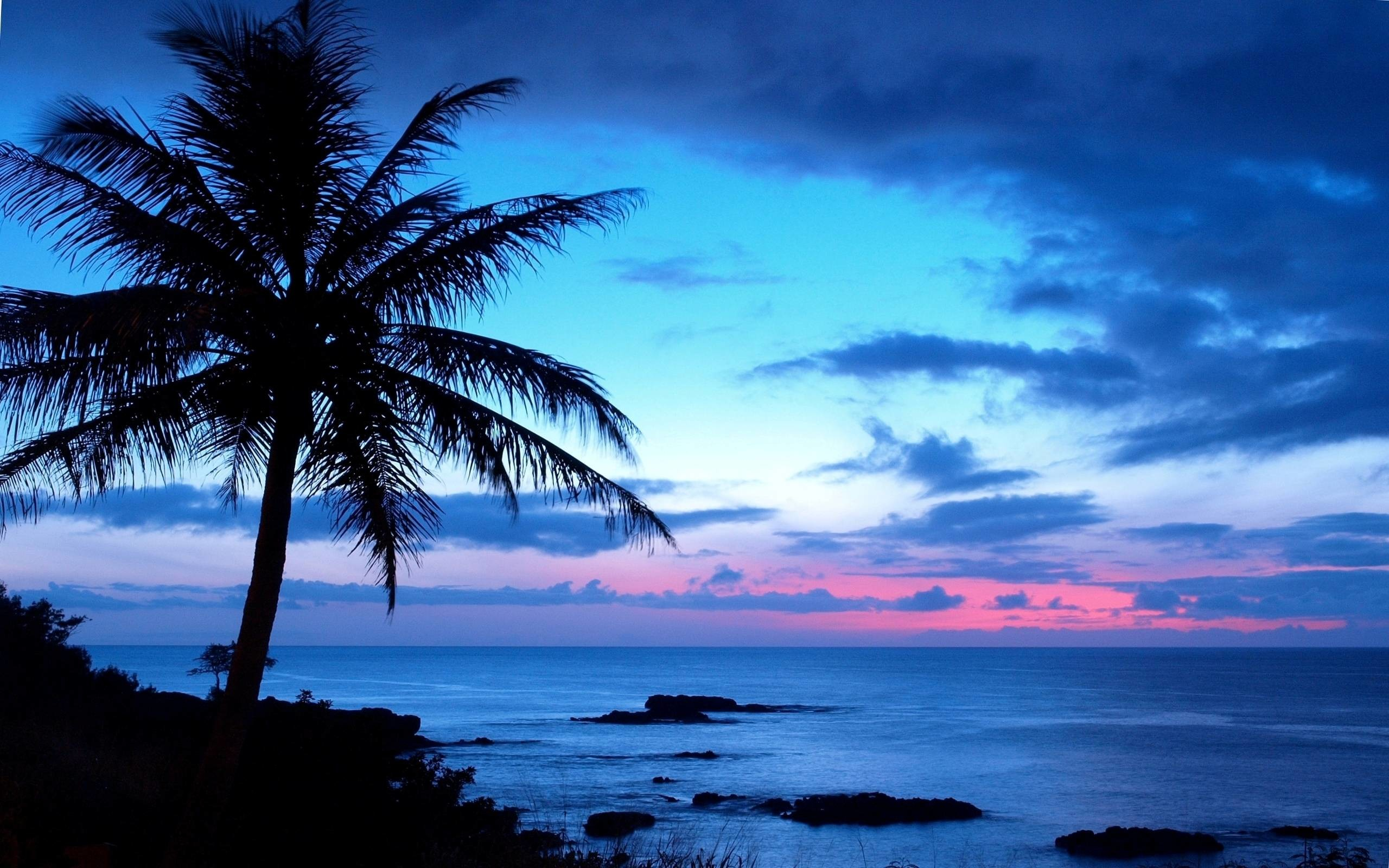 Res: 2560x1600, Hawaii HD Wallpaper #828