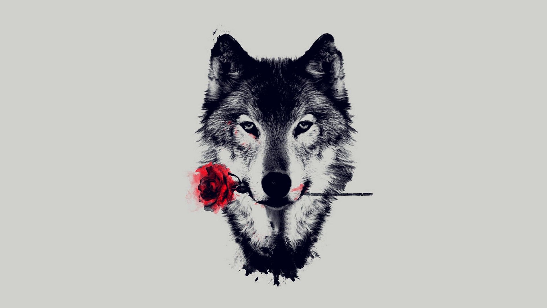 Res: 1920x1080, Wolf Art 19 HD Images Wallpapers | HD Image Wallpaper