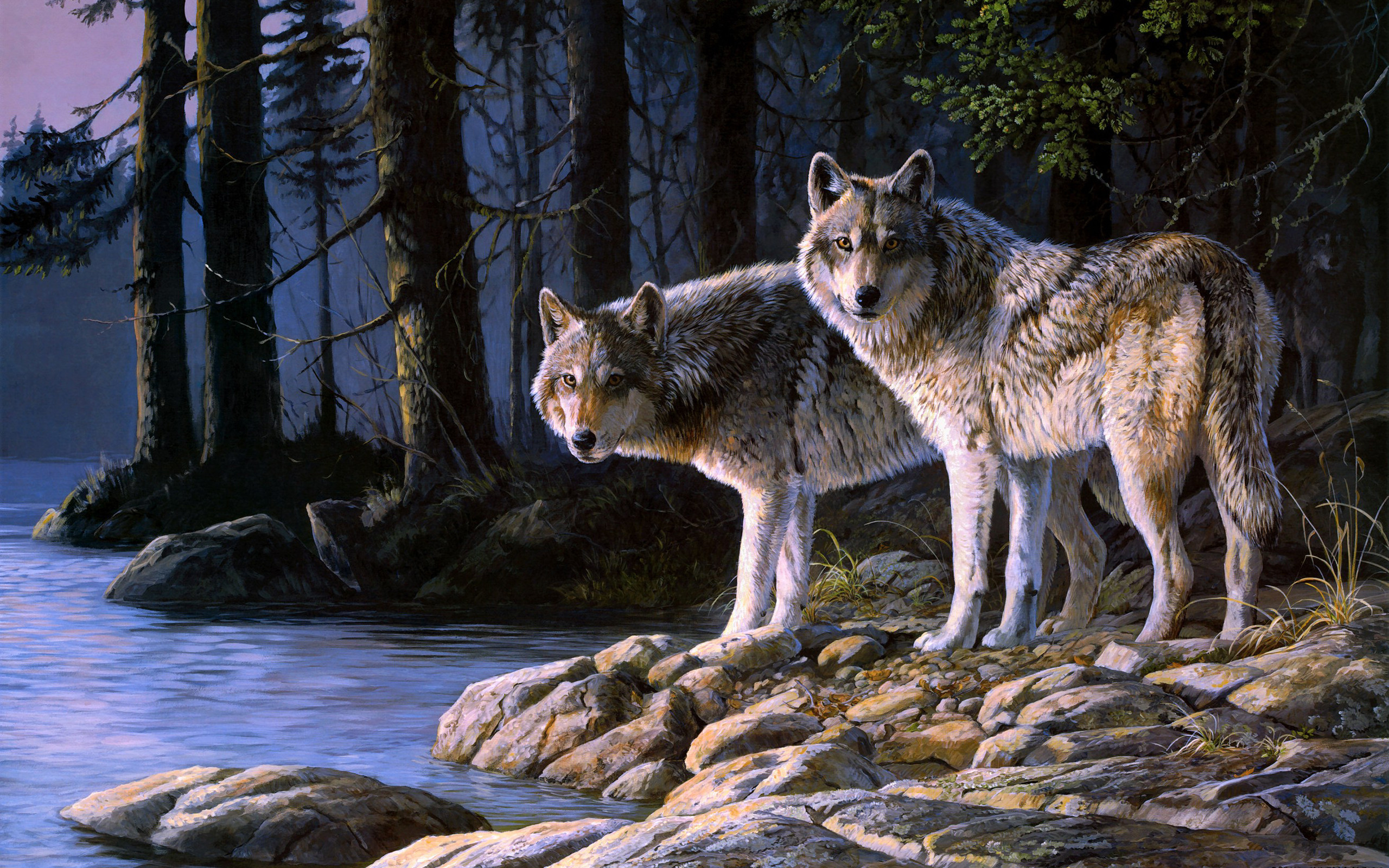Res: 2560x1600, Tiere - Wolf Wallpaper