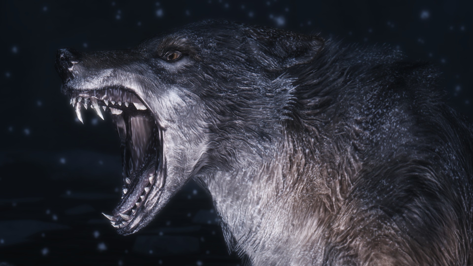 Res: 1920x1080, HD Wolf Wallpapers Wallpaper