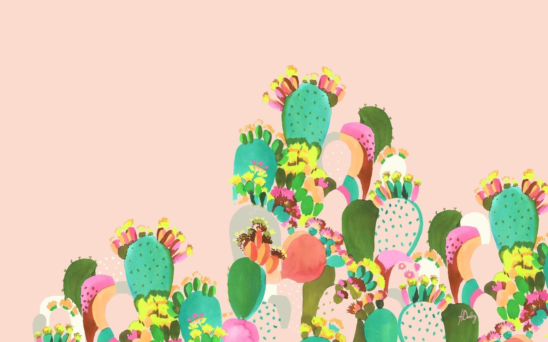 Res: 1920x1200, Bild: Cactus Familie wallpapers and stock photos. Â«