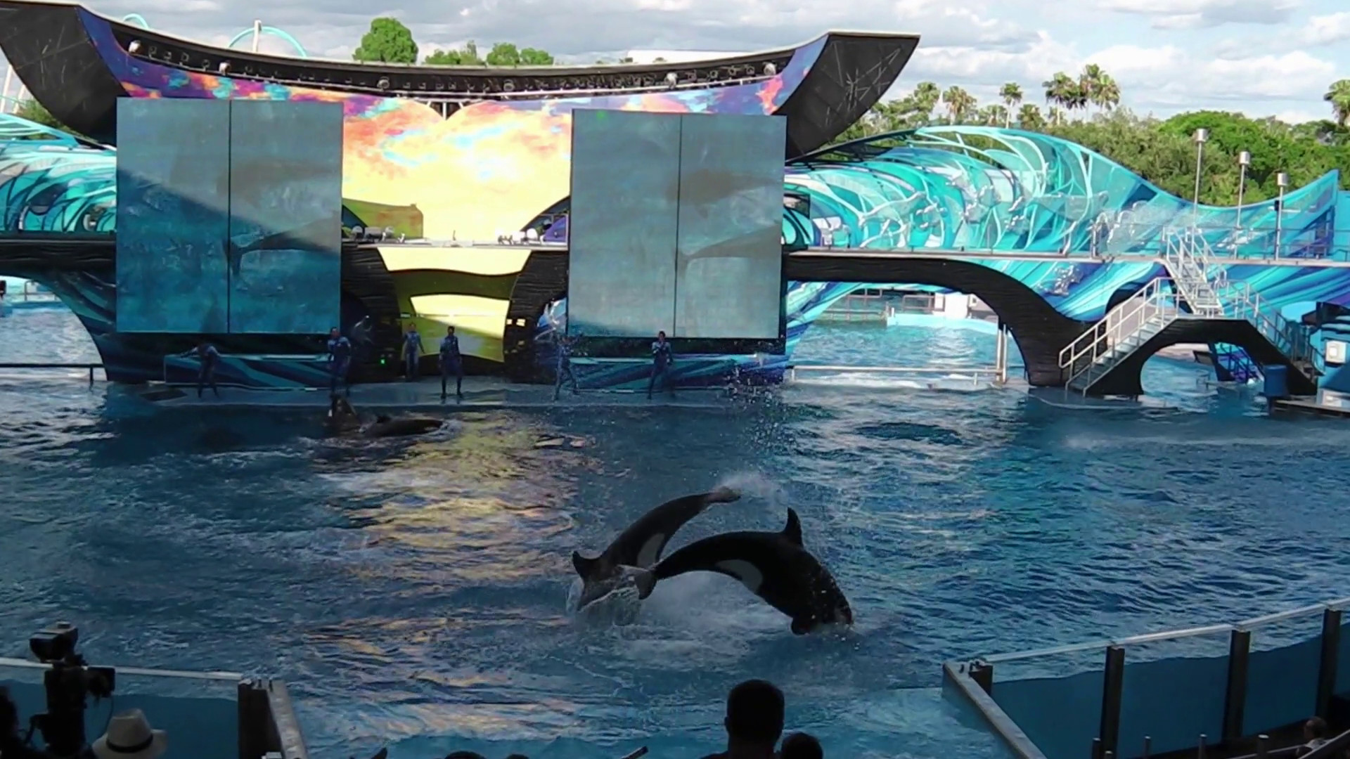Res: 1920x1080, Orlando, Florida, United States - April 22, 2012: Tilikum, the killer  whale, jumping in the shamu show at Seaworld. Tilikum is the largest and  most famous ...