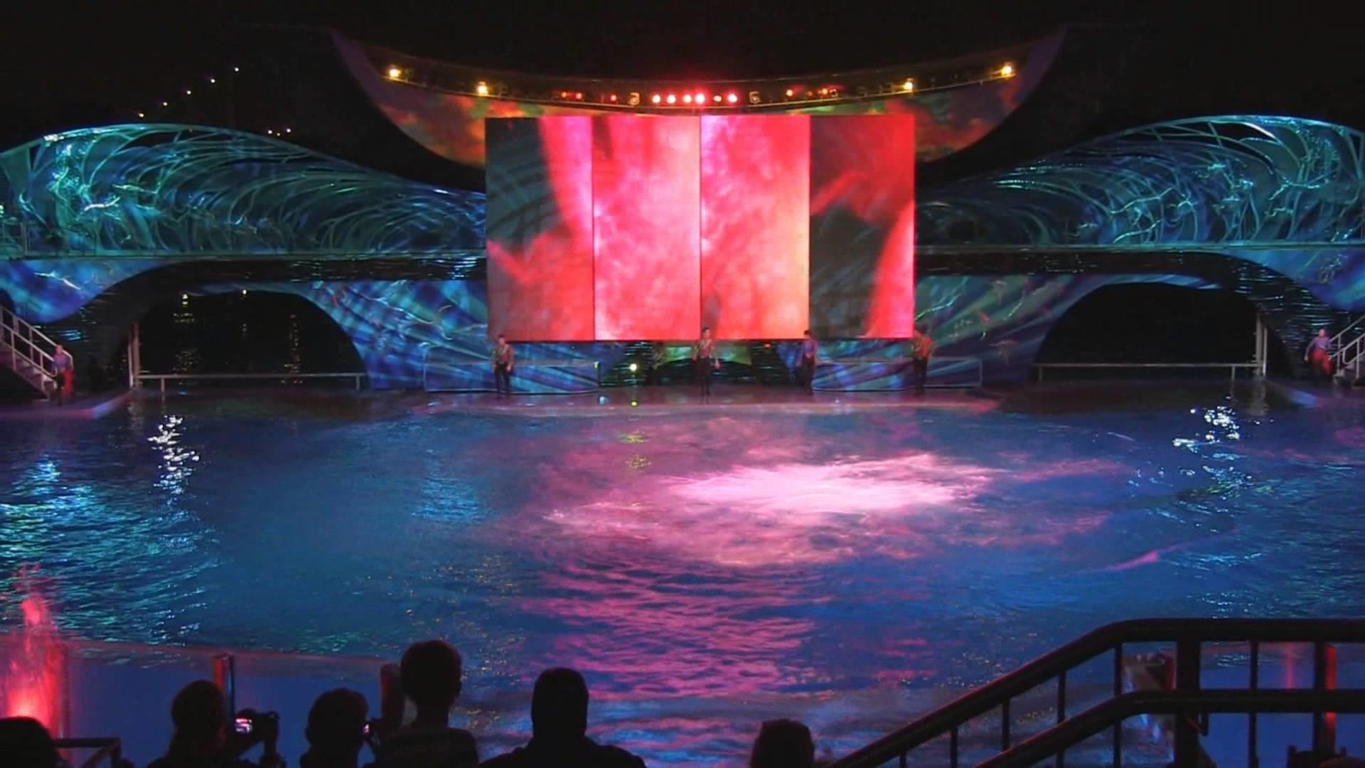 Res: 1920x1080, Shamu Rocks 2013 show during Summer Nights at SeaWorld Orlando (Full Show  in HD) - YouTube
