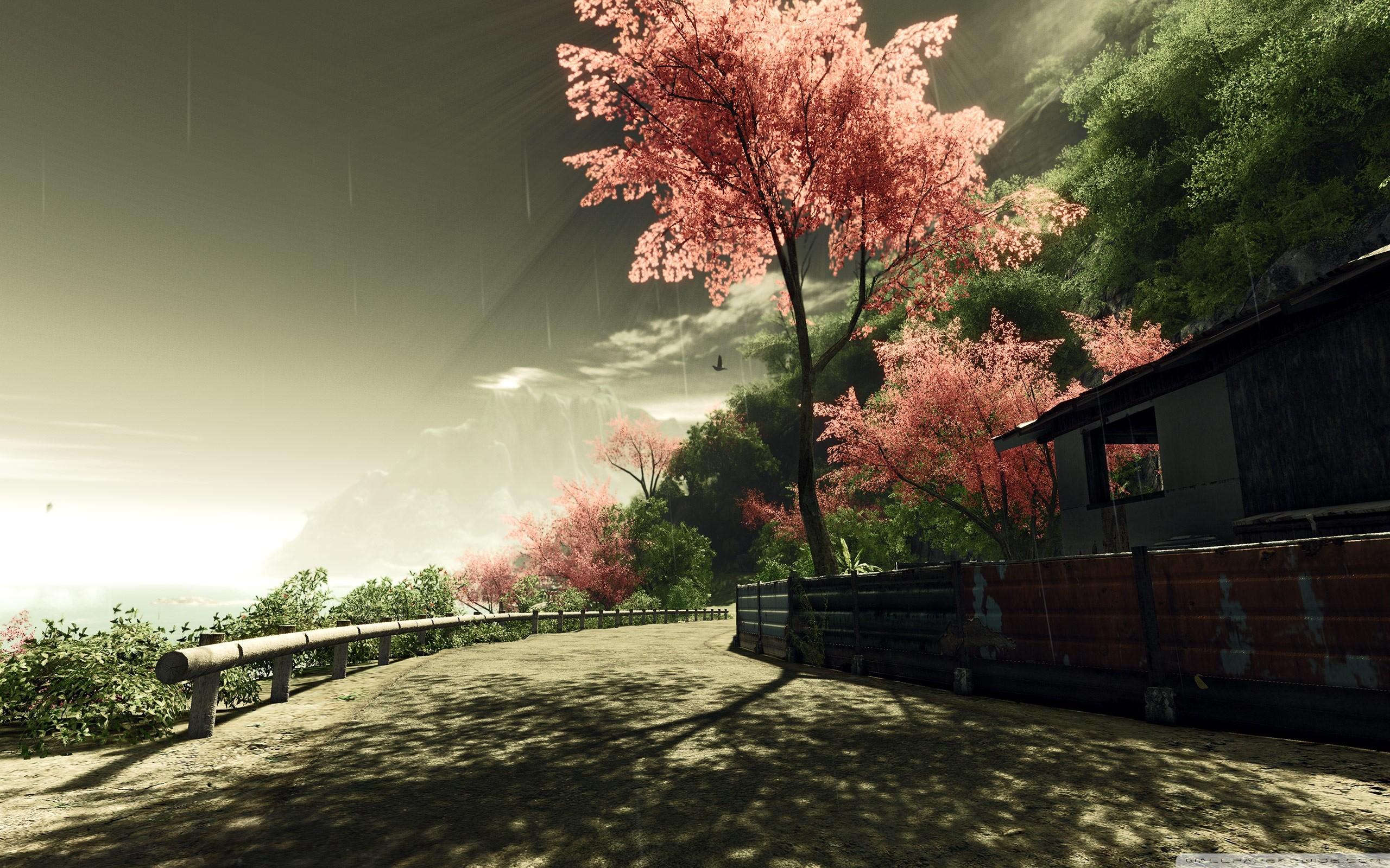 Res: 2560x1600, ...  Crysis Sakura â ¤ 4K HD Desktop Wallpaper for 4K Ultra HD TV