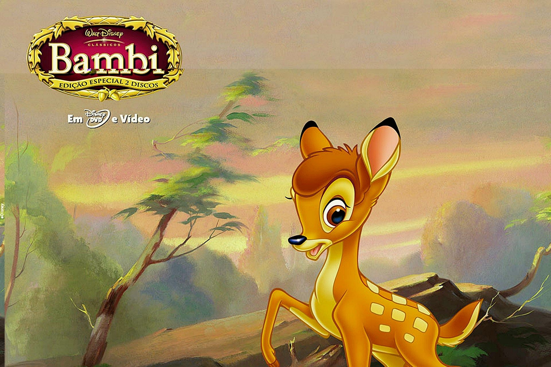 Res: 1920x1280, bambi wallpapers WallpaperUP