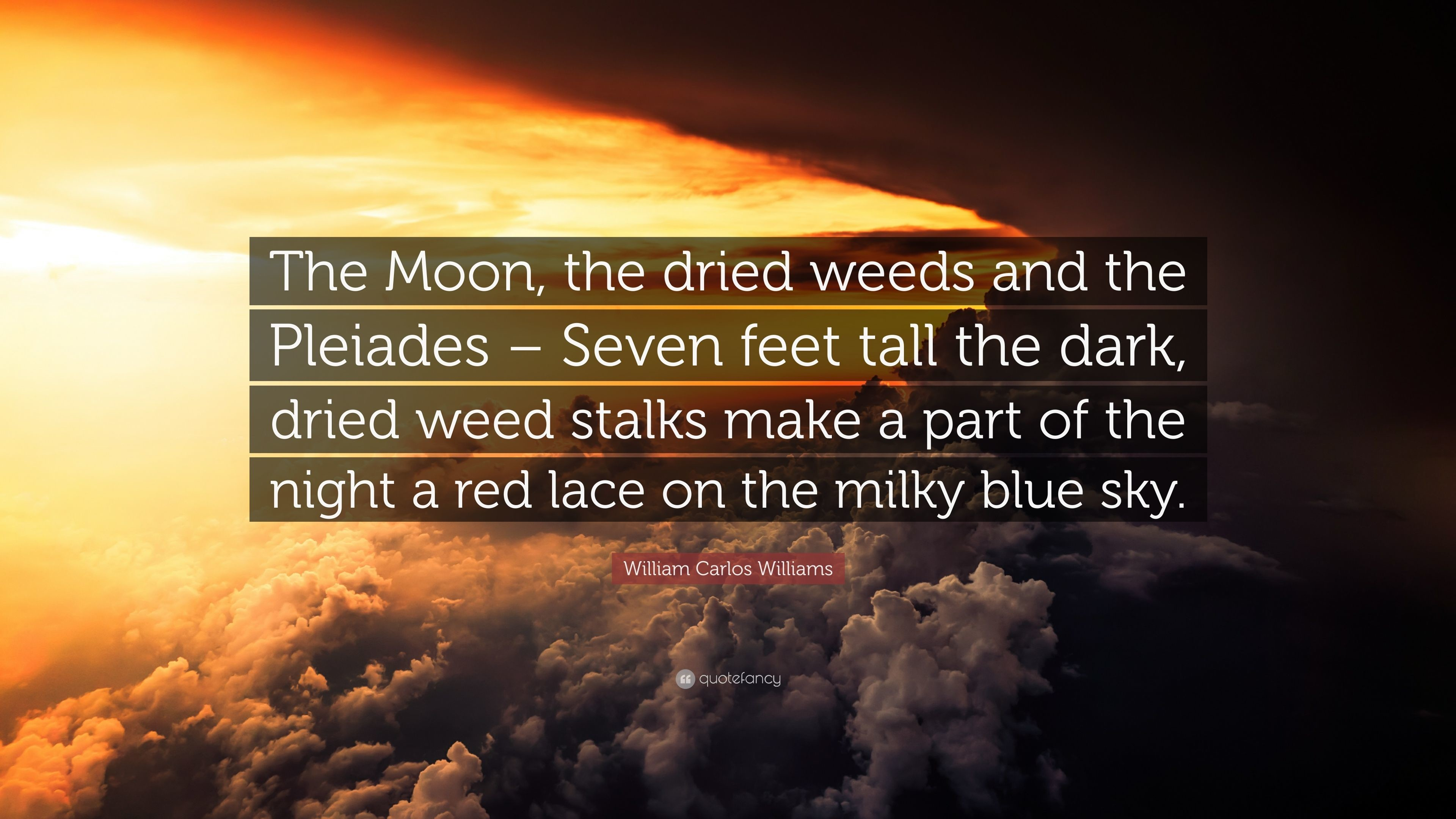 """Res: 3840x2160, William Carlos Williams Quote: """"The Moon, the dried weeds and the Pleiades –"""
