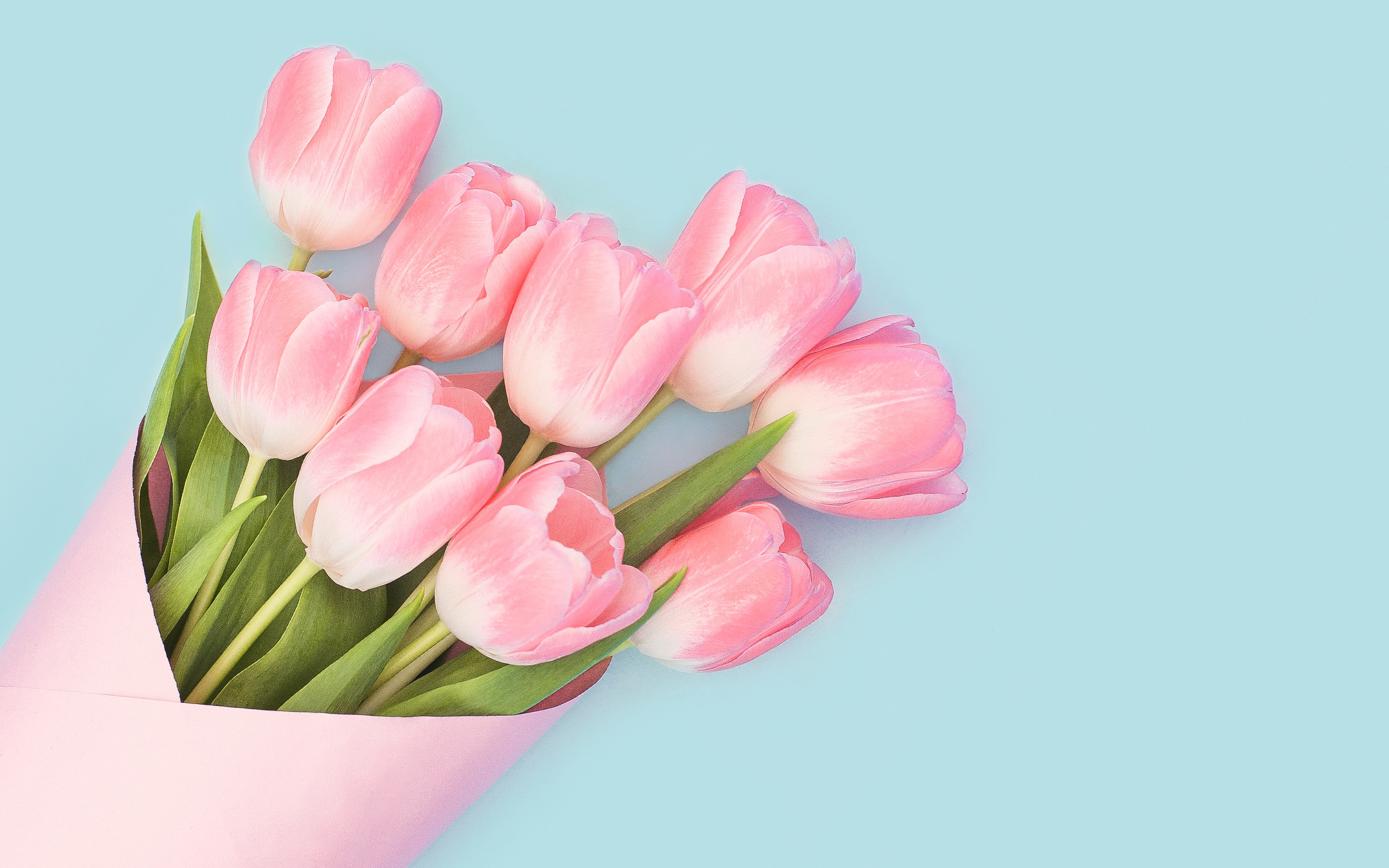 Res: 2160x1350, Tags: Pink Baby Tulips